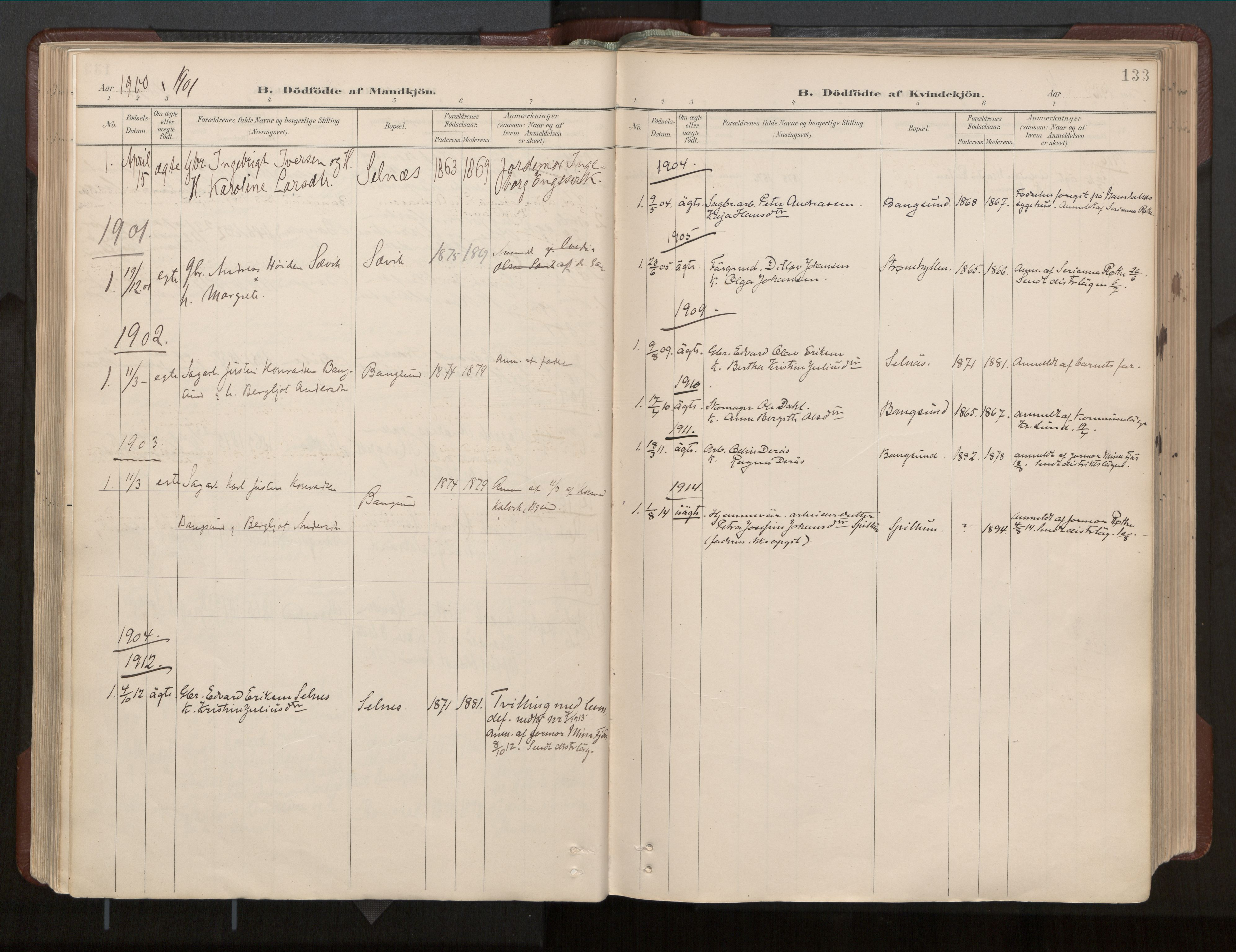 SAT, Ministerialprotokoller, klokkerbøker og fødselsregistre - Nord-Trøndelag, 770/L0589: Ministerialbok nr. 770A03, 1887-1929, s. 133