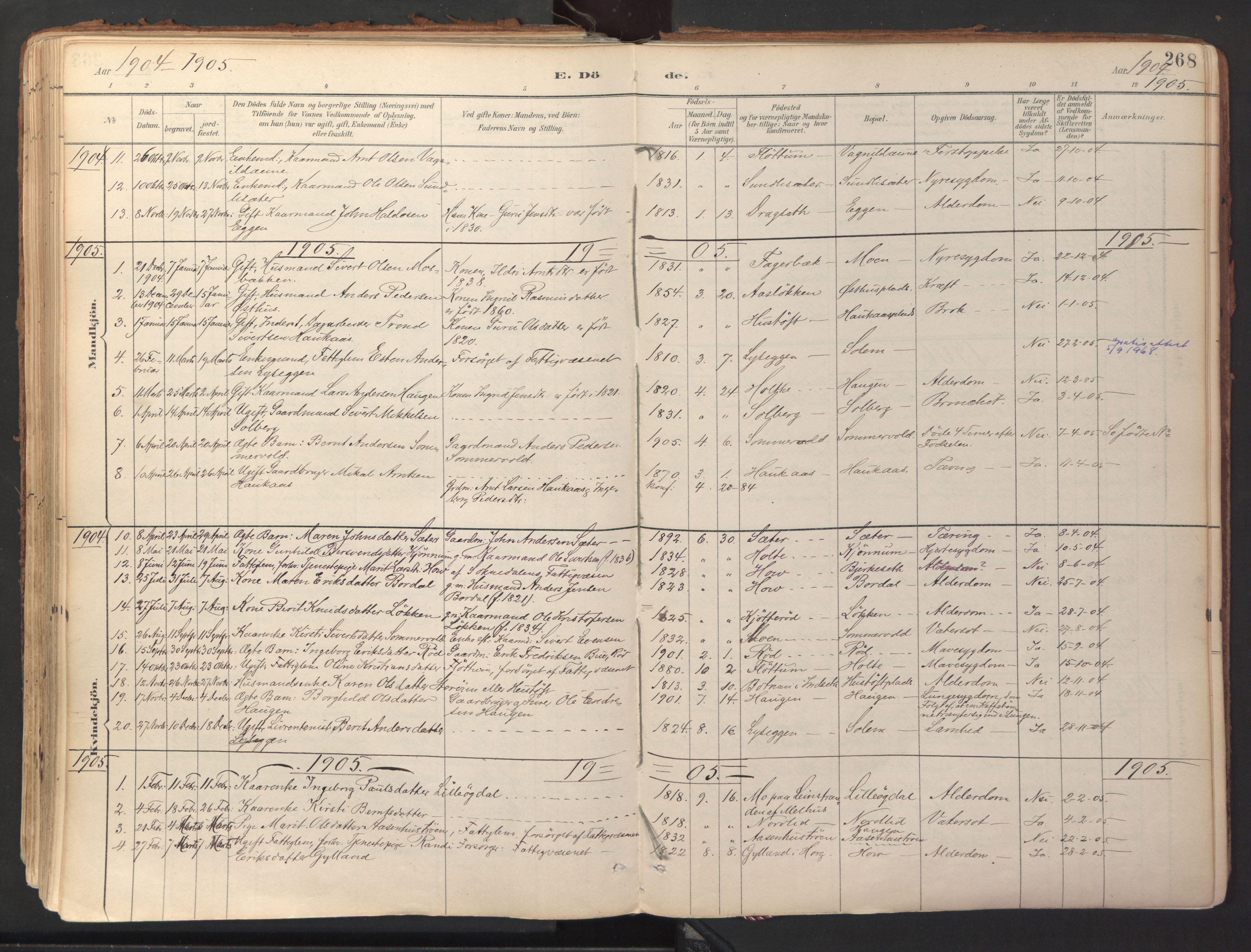 SAT, Ministerialprotokoller, klokkerbøker og fødselsregistre - Sør-Trøndelag, 689/L1041: Ministerialbok nr. 689A06, 1891-1923, s. 268