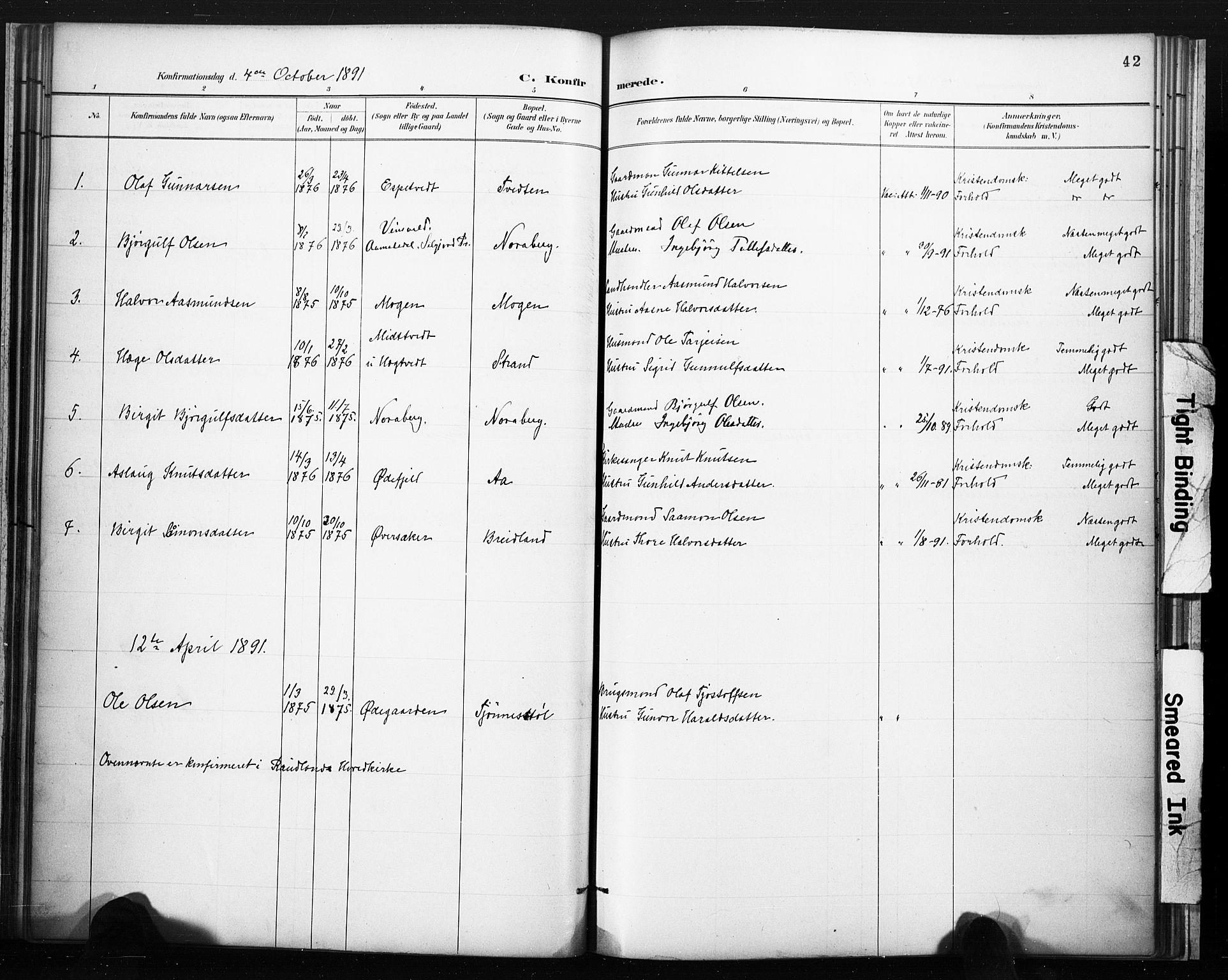 SAKO, Lårdal kirkebøker, F/Fc/L0002: Ministerialbok nr. III 2, 1887-1906, s. 42