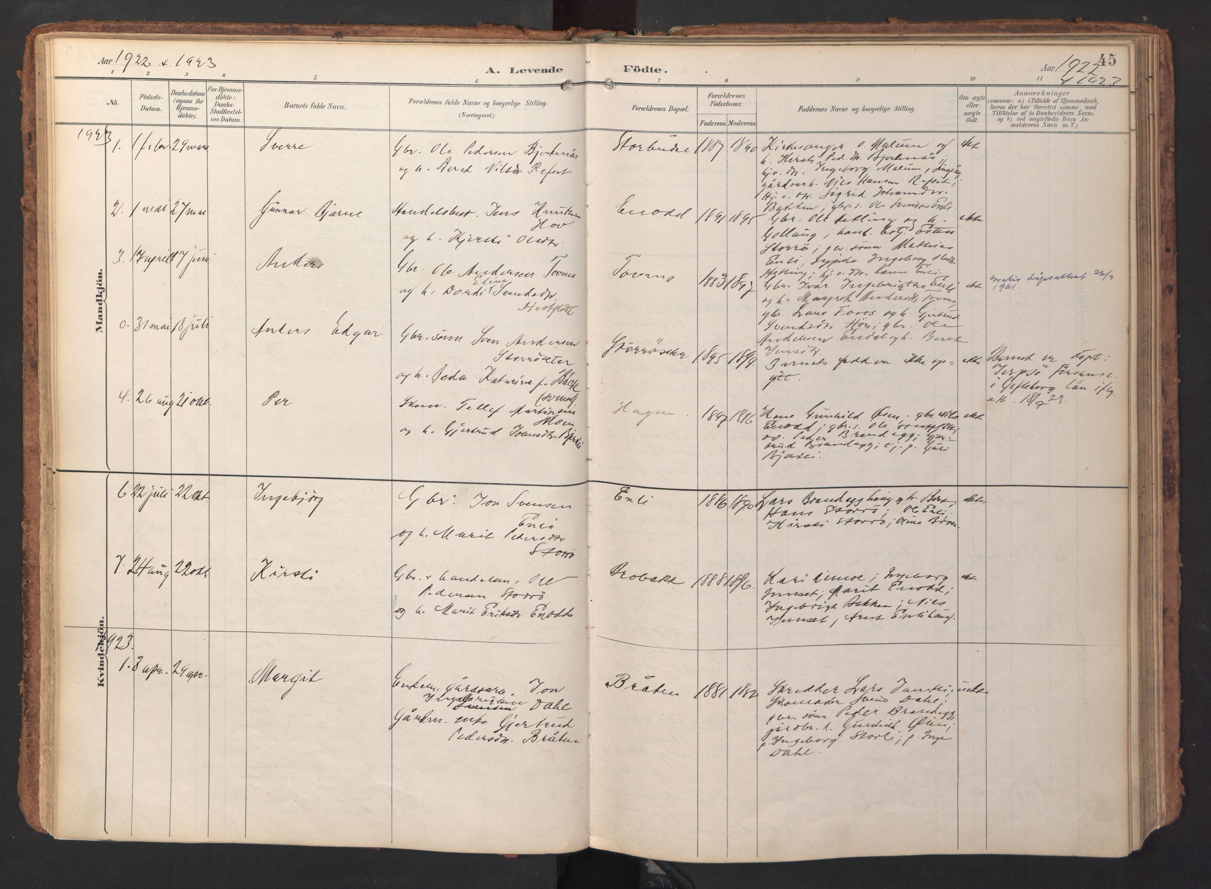 SAT, Ministerialprotokoller, klokkerbøker og fødselsregistre - Sør-Trøndelag, 690/L1050: Ministerialbok nr. 690A01, 1889-1929, s. 45