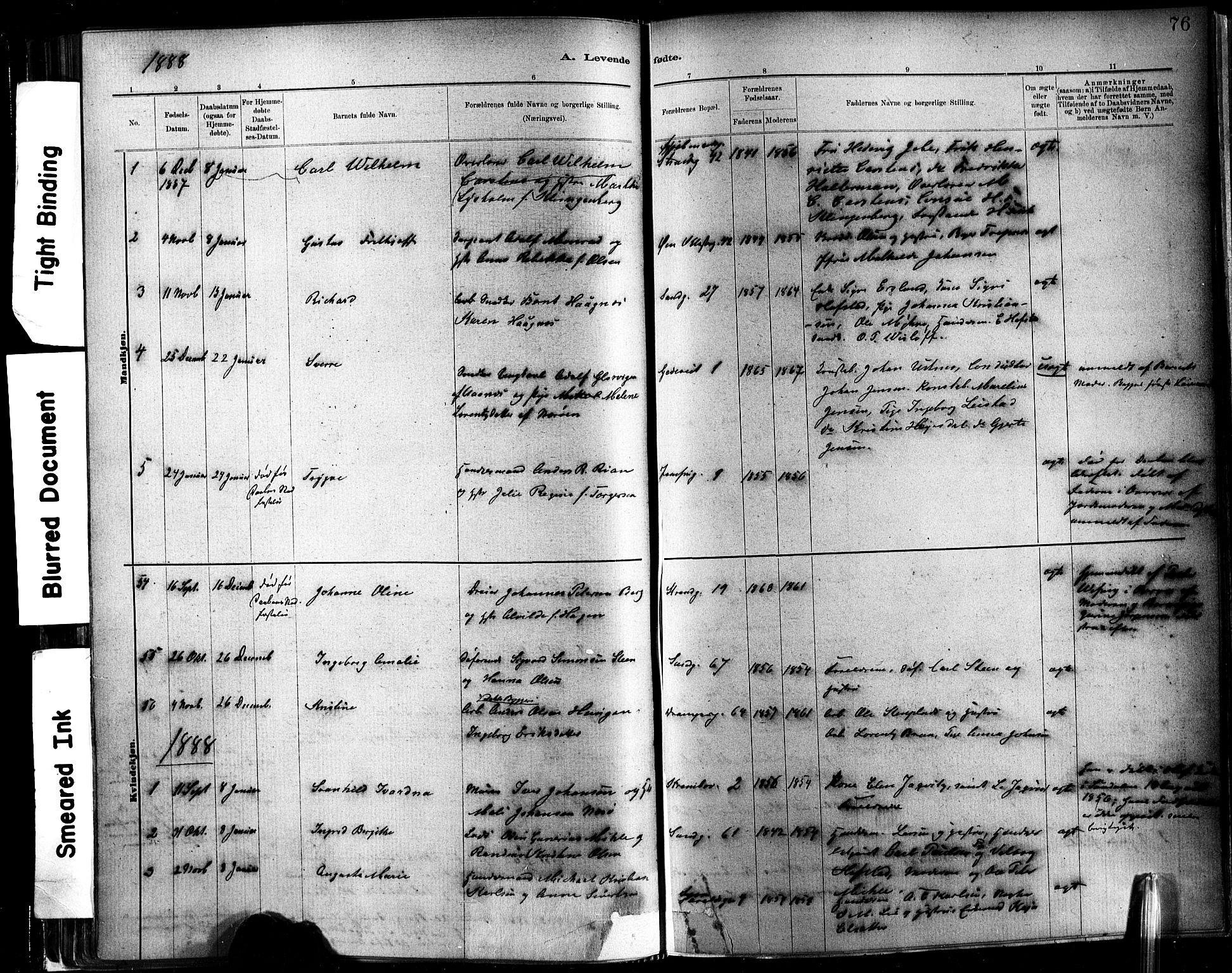 SAT, Ministerialprotokoller, klokkerbøker og fødselsregistre - Sør-Trøndelag, 602/L0119: Ministerialbok nr. 602A17, 1880-1901, s. 76