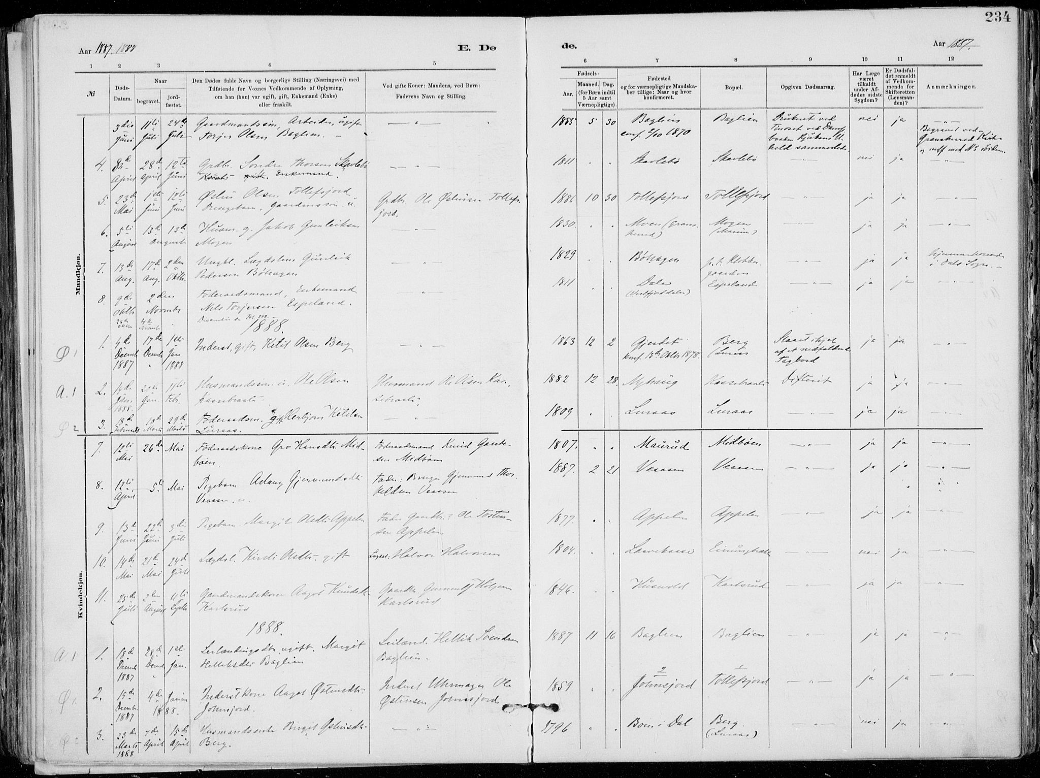 SAKO, Tinn kirkebøker, F/Fa/L0007: Ministerialbok nr. I 7, 1878-1922, s. 234