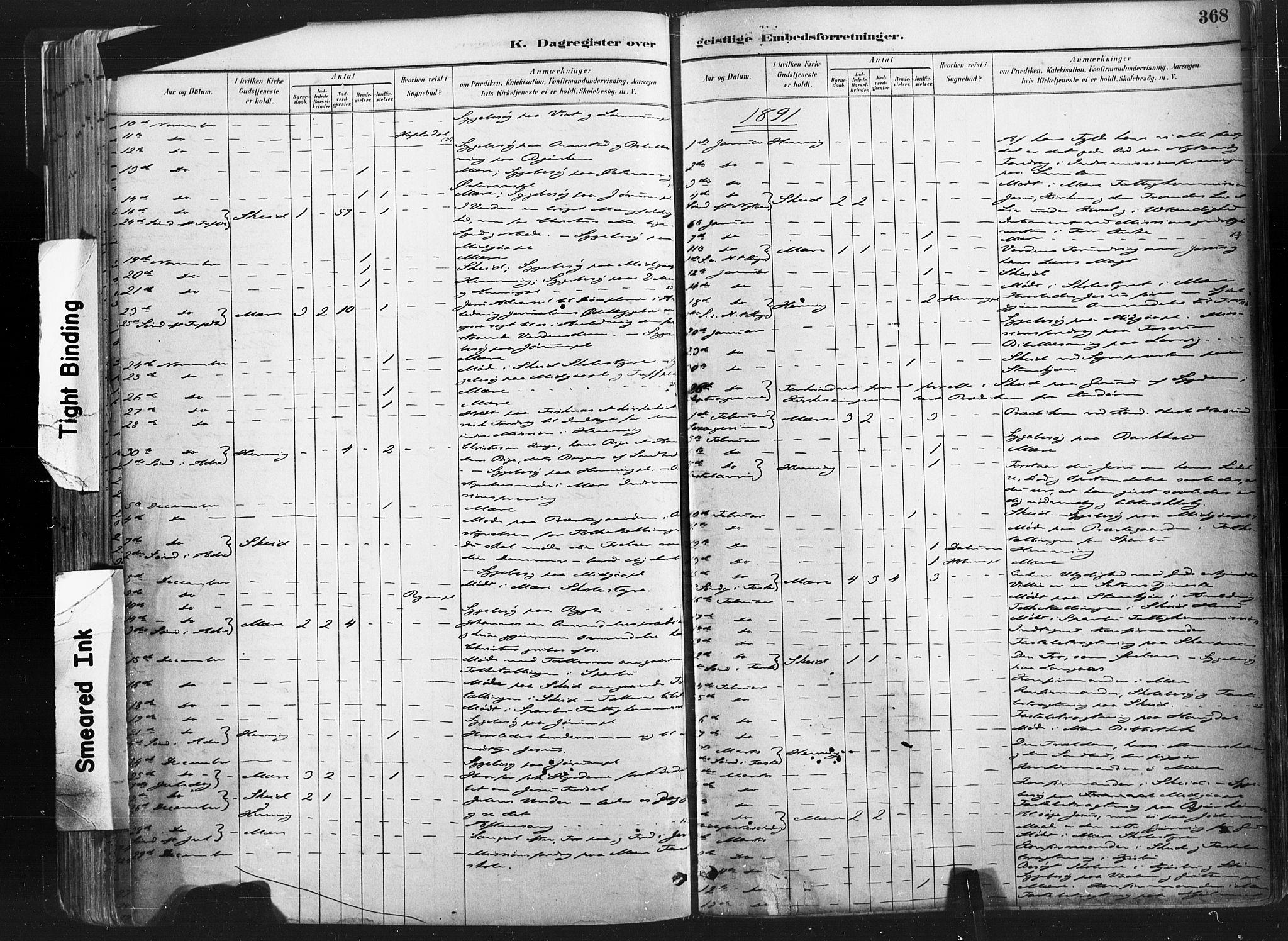 SAT, Ministerialprotokoller, klokkerbøker og fødselsregistre - Nord-Trøndelag, 735/L0351: Ministerialbok nr. 735A10, 1884-1908, s. 368
