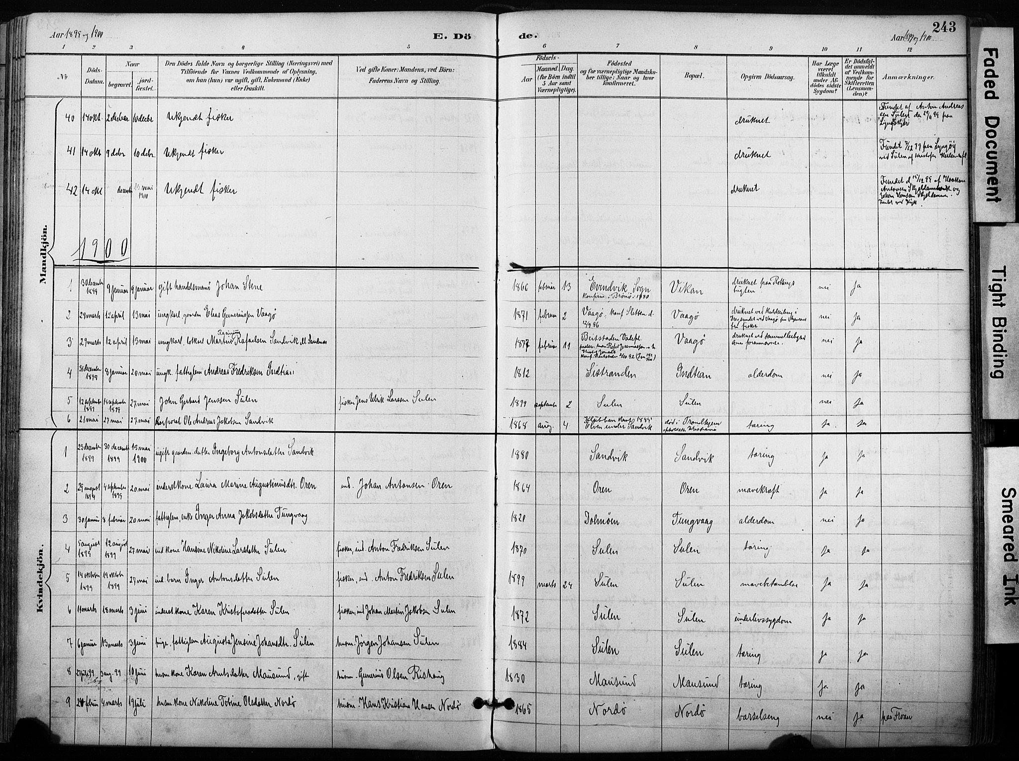 SAT, Ministerialprotokoller, klokkerbøker og fødselsregistre - Sør-Trøndelag, 640/L0579: Ministerialbok nr. 640A04, 1889-1902, s. 243