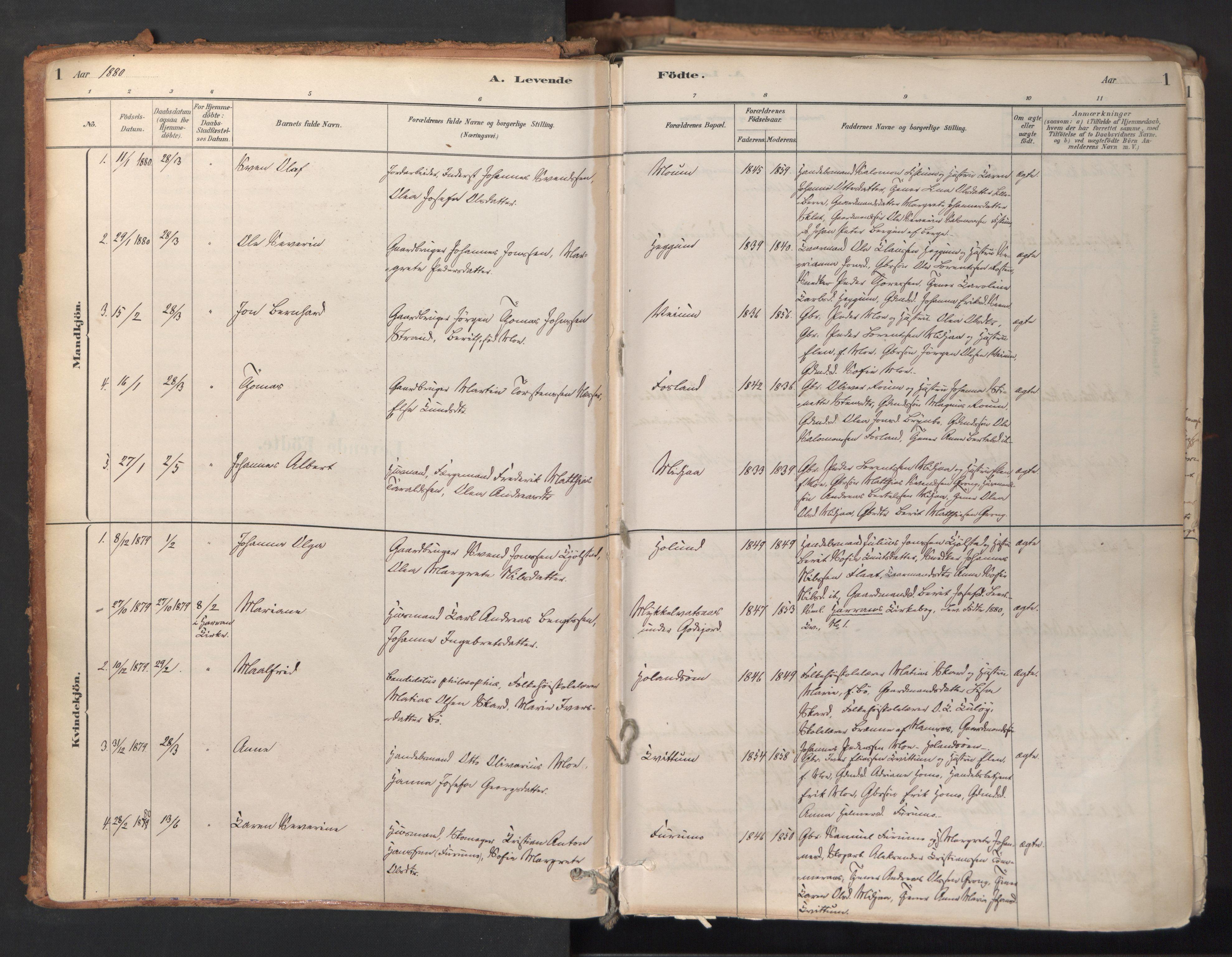 SAT, Ministerialprotokoller, klokkerbøker og fødselsregistre - Nord-Trøndelag, 758/L0519: Ministerialbok nr. 758A04, 1880-1926, s. 1