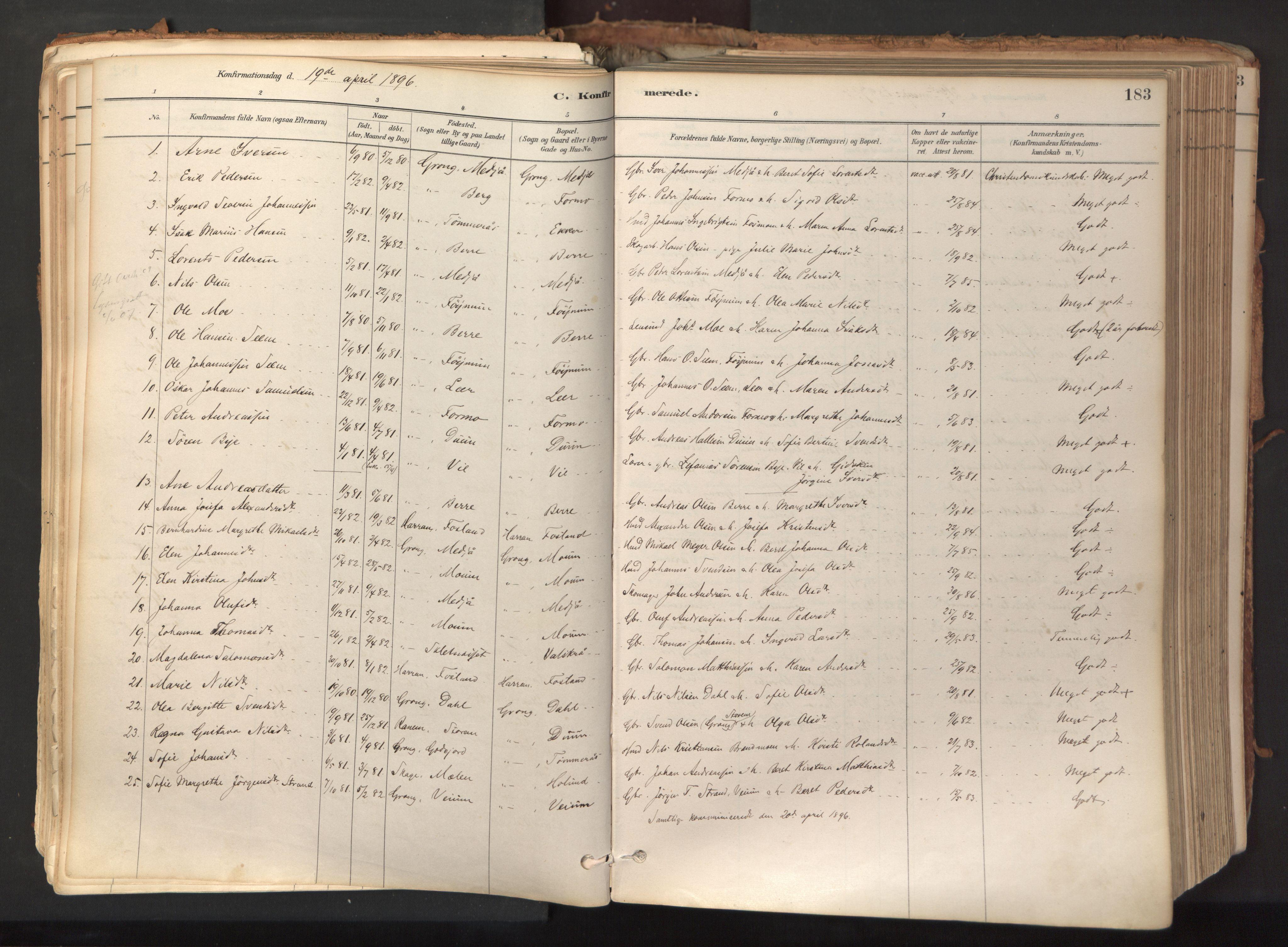 SAT, Ministerialprotokoller, klokkerbøker og fødselsregistre - Nord-Trøndelag, 758/L0519: Ministerialbok nr. 758A04, 1880-1926, s. 183