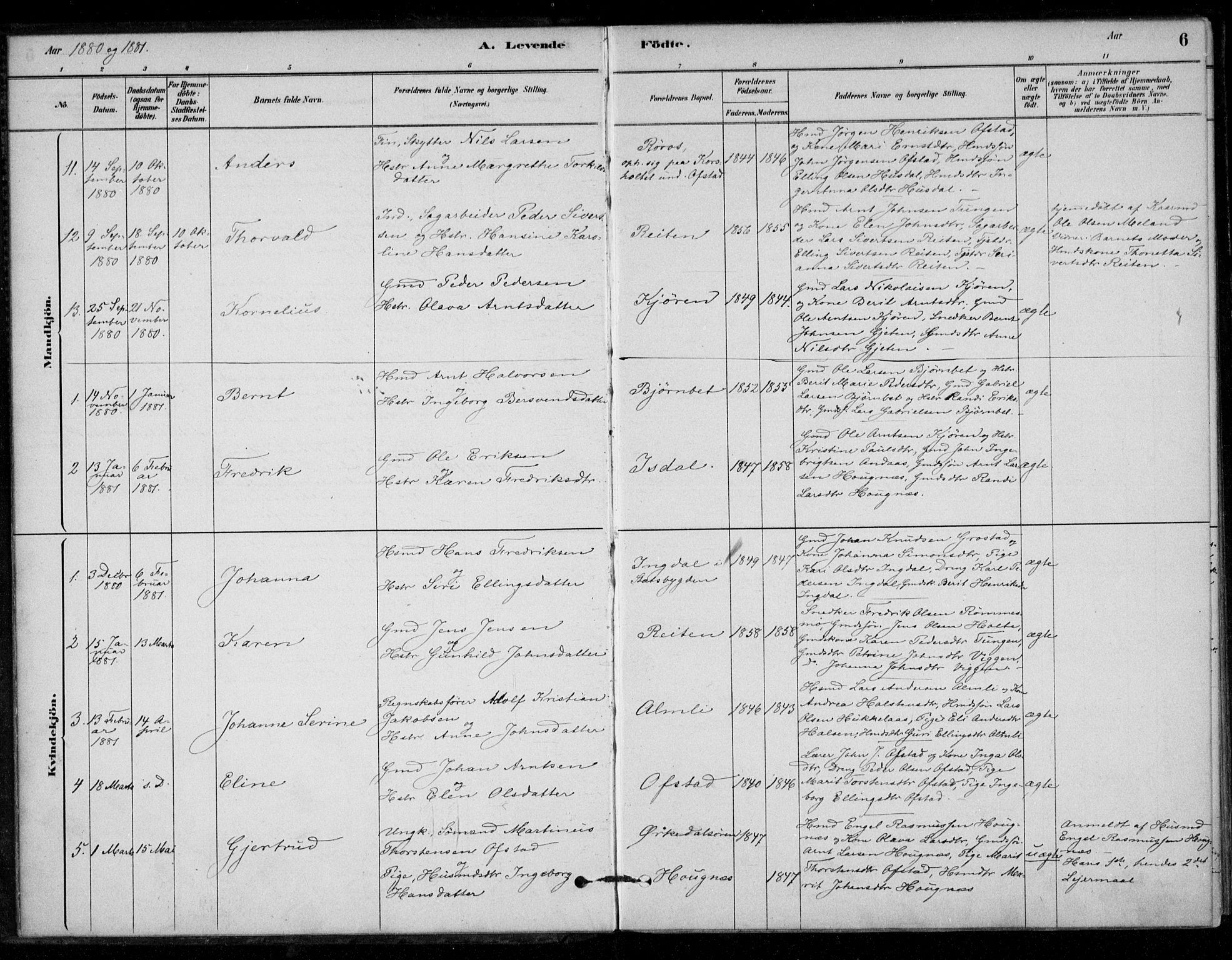 SAT, Ministerialprotokoller, klokkerbøker og fødselsregistre - Sør-Trøndelag, 670/L0836: Ministerialbok nr. 670A01, 1879-1904, s. 6