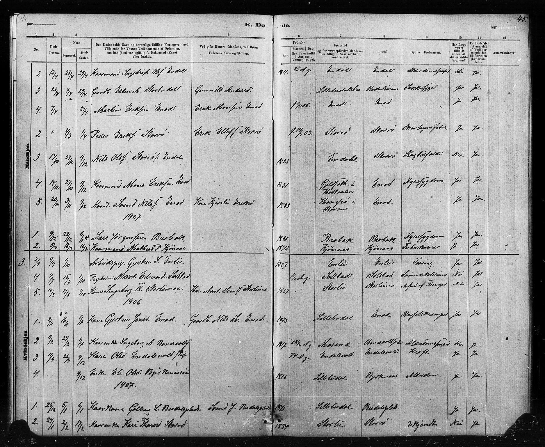 SAT, Ministerialprotokoller, klokkerbøker og fødselsregistre - Sør-Trøndelag, 690/L1051: Klokkerbok nr. 690C01, 1887-1908, s. 45