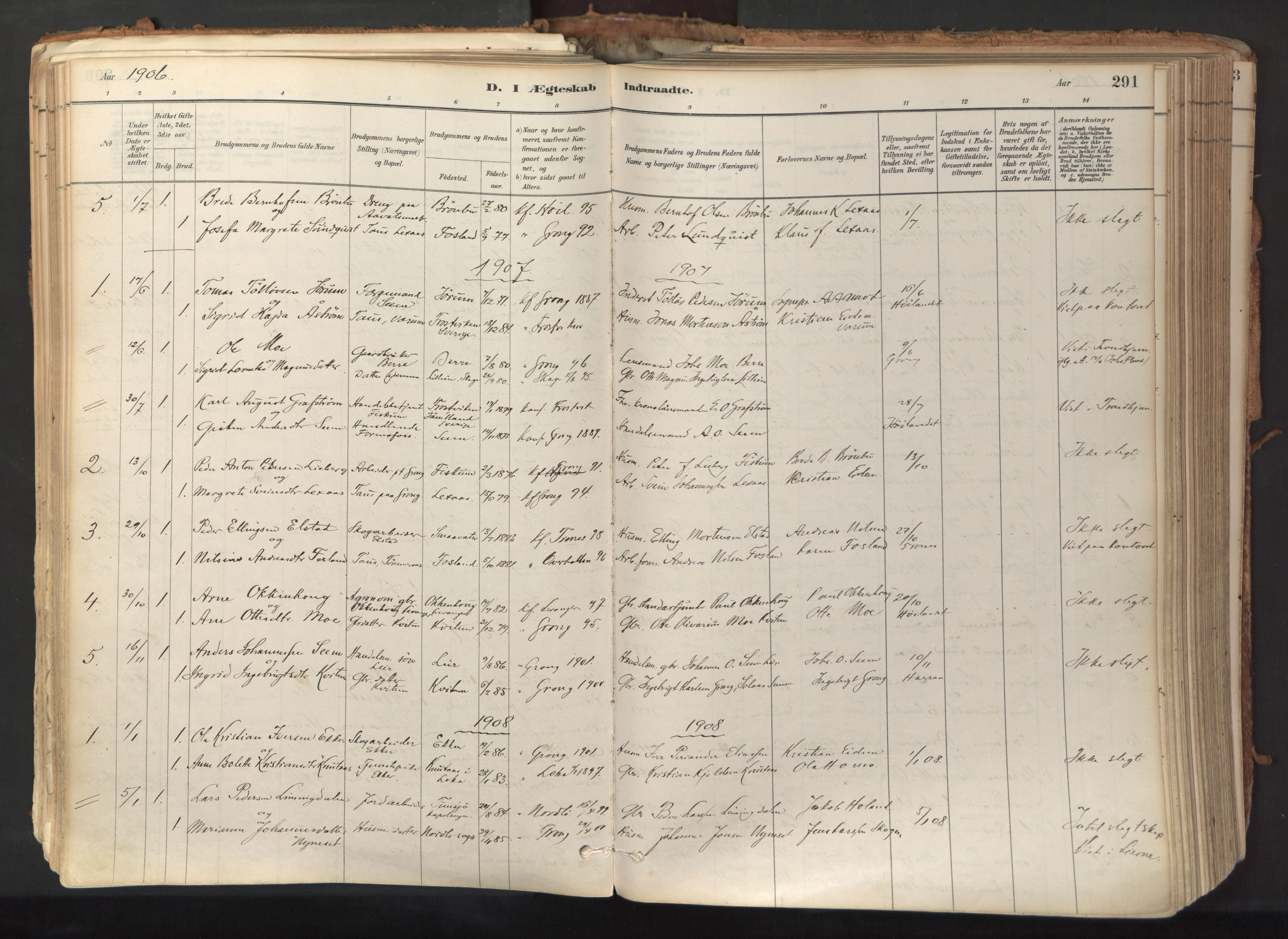 SAT, Ministerialprotokoller, klokkerbøker og fødselsregistre - Nord-Trøndelag, 758/L0519: Ministerialbok nr. 758A04, 1880-1926, s. 291