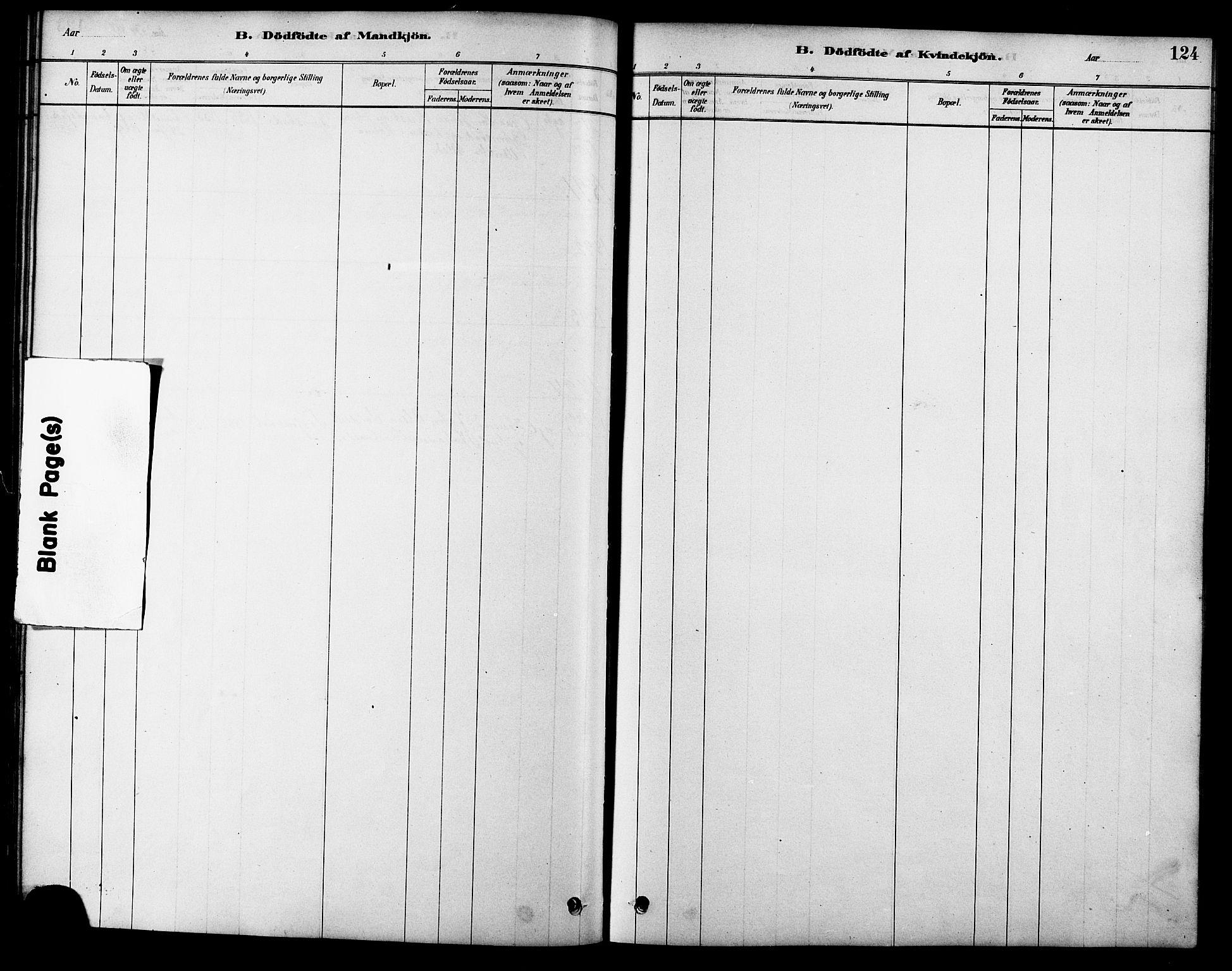 SAT, Ministerialprotokoller, klokkerbøker og fødselsregistre - Sør-Trøndelag, 616/L0423: Klokkerbok nr. 616C06, 1878-1903, s. 124