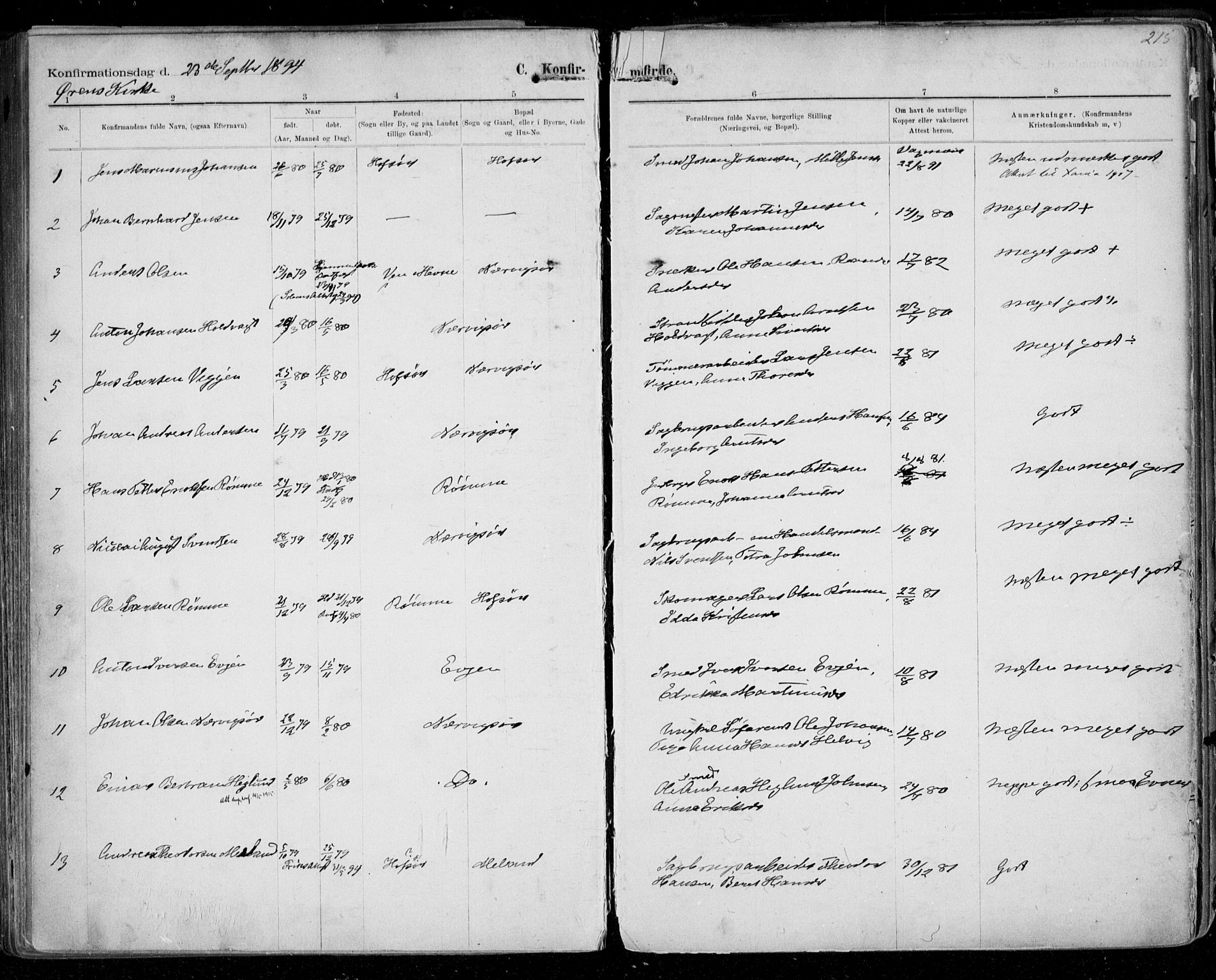 SAT, Ministerialprotokoller, klokkerbøker og fødselsregistre - Sør-Trøndelag, 668/L0811: Ministerialbok nr. 668A11, 1894-1913, s. 215