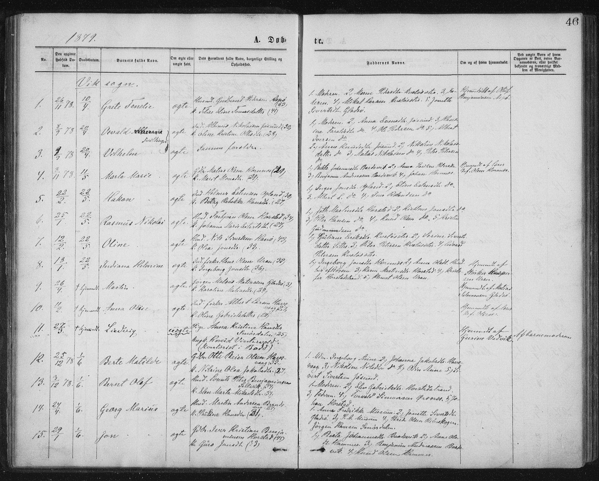 SAT, Ministerialprotokoller, klokkerbøker og fødselsregistre - Nord-Trøndelag, 771/L0596: Ministerialbok nr. 771A03, 1870-1884, s. 46