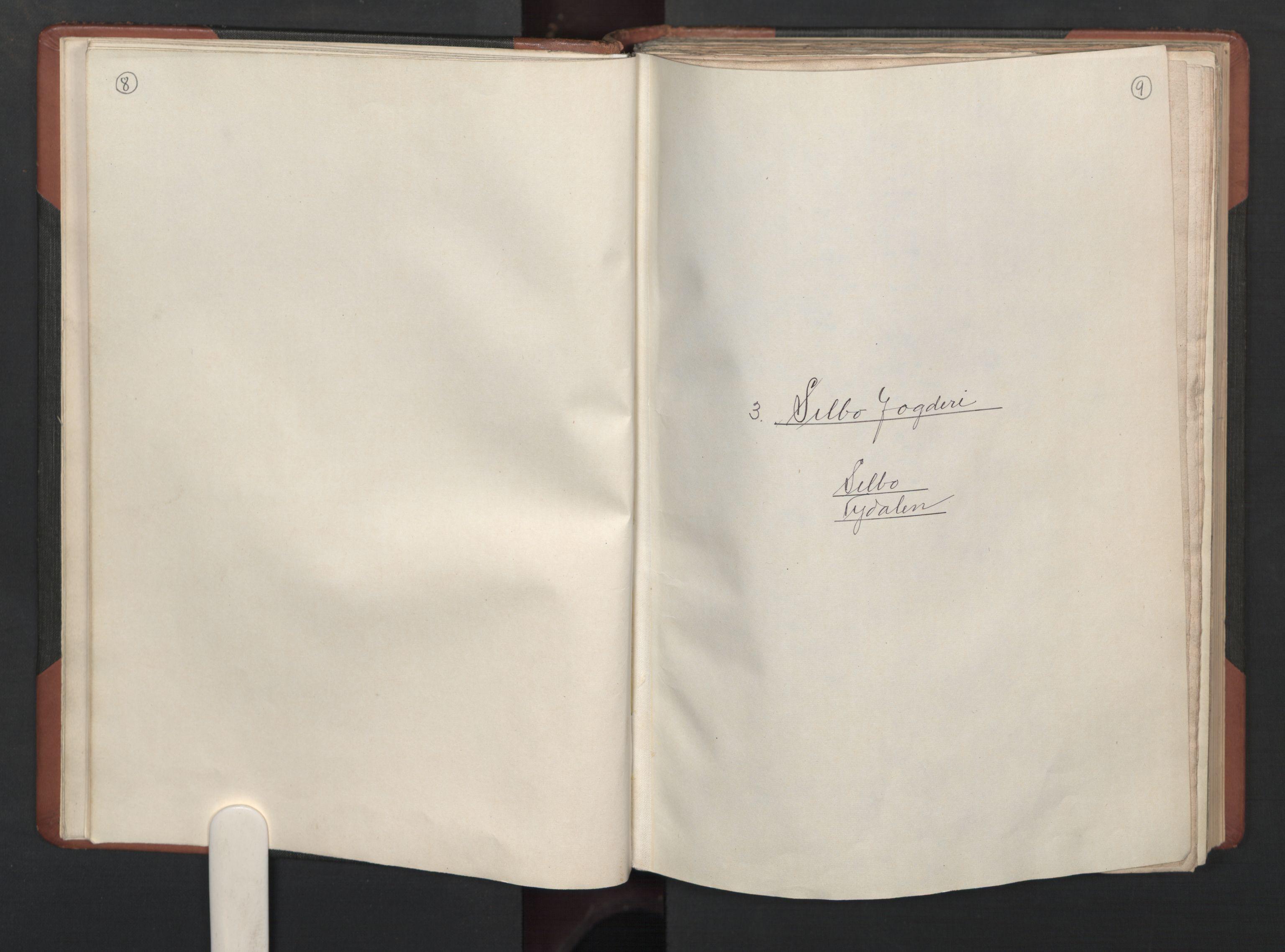 RA, Fogdenes og sorenskrivernes manntall 1664-1666, nr. 19: Fosen fogderi, Inderøy fogderi, Selbu fogderi, Namdal fogderi og Stjørdal fogderi, 1664-1665, s. 8-9