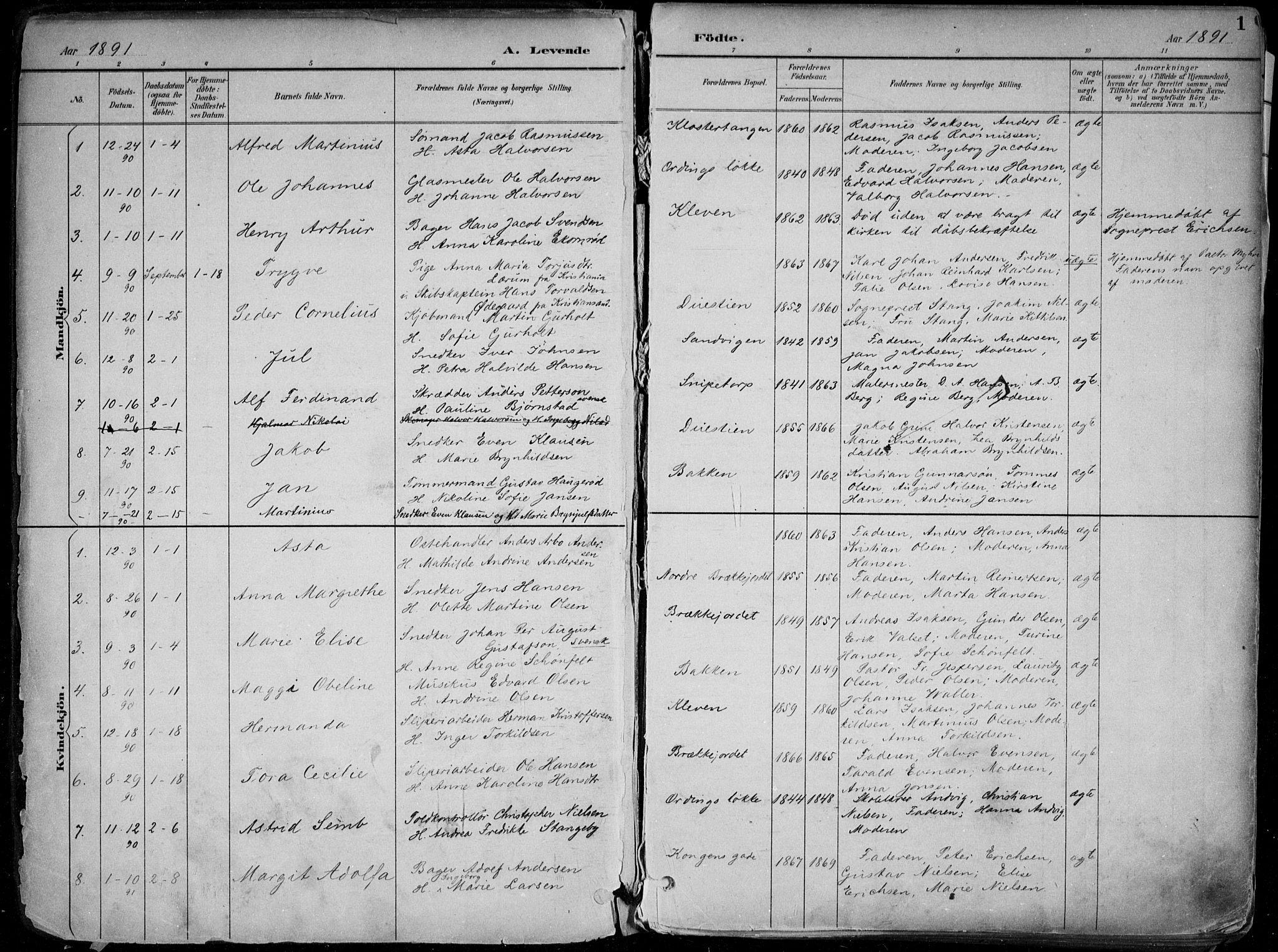 SAKO, Skien kirkebøker, F/Fa/L0010: Ministerialbok nr. 10, 1891-1899, s. 1