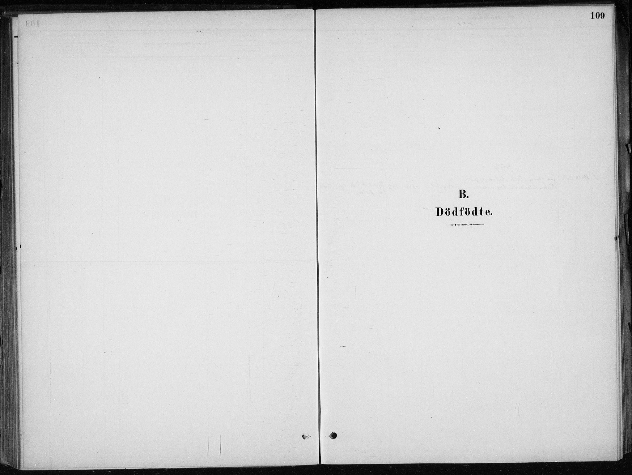 SAB, Skånevik Sokneprestembete, H/Haa: Ministerialbok nr. E  1, 1879-1901, s. 109