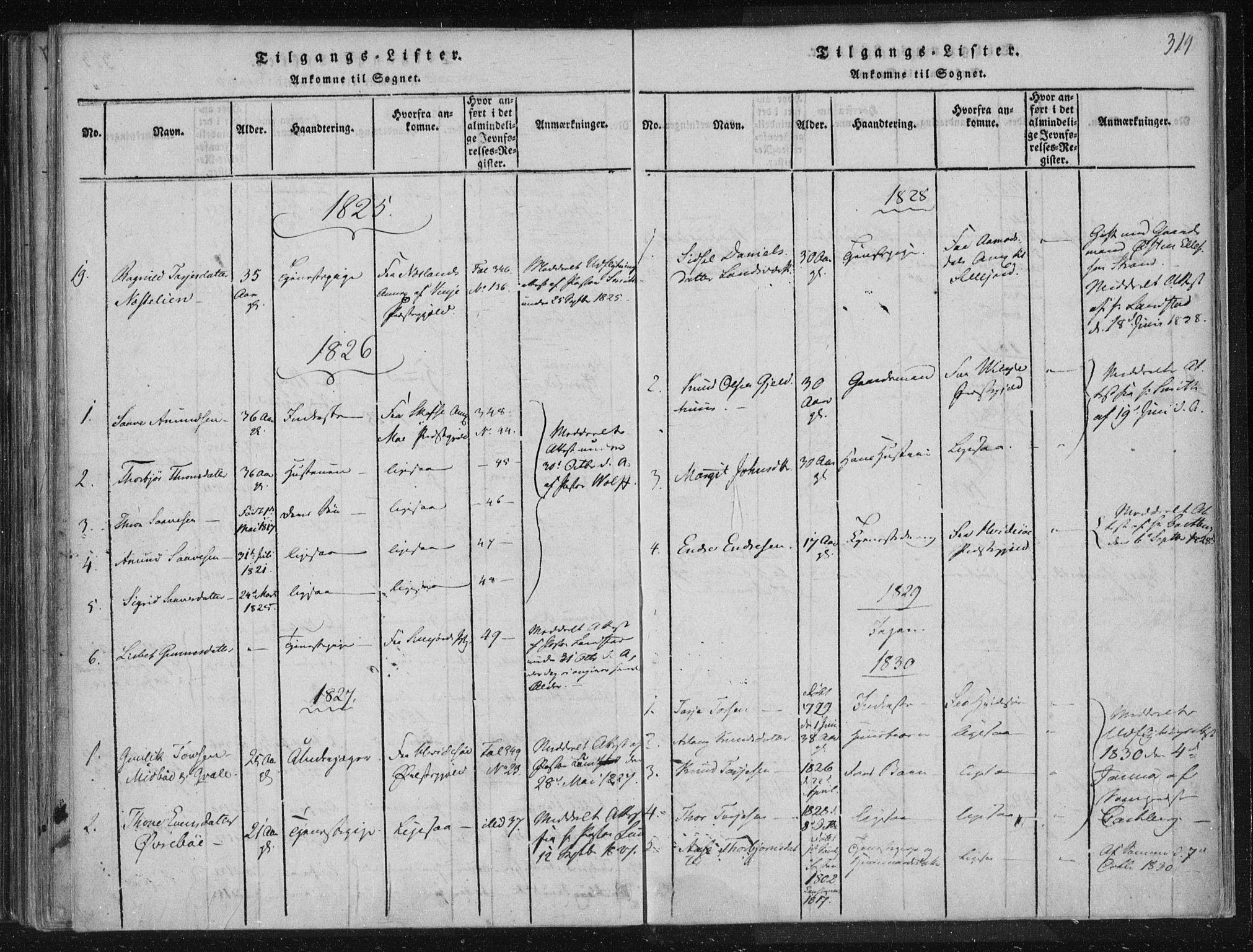 SAKO, Lårdal kirkebøker, F/Fc/L0001: Ministerialbok nr. III 1, 1815-1860, s. 314