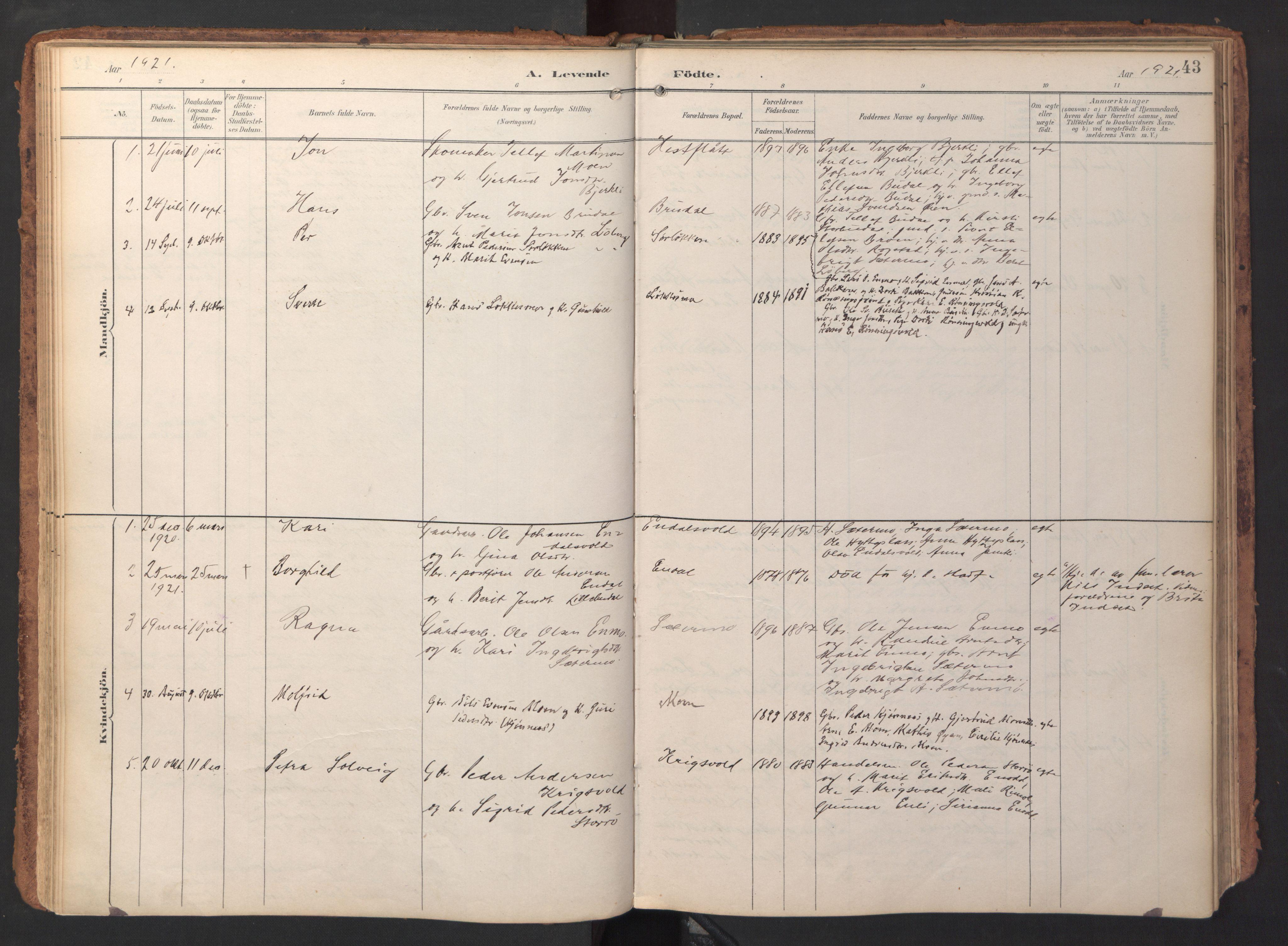 SAT, Ministerialprotokoller, klokkerbøker og fødselsregistre - Sør-Trøndelag, 690/L1050: Ministerialbok nr. 690A01, 1889-1929, s. 43