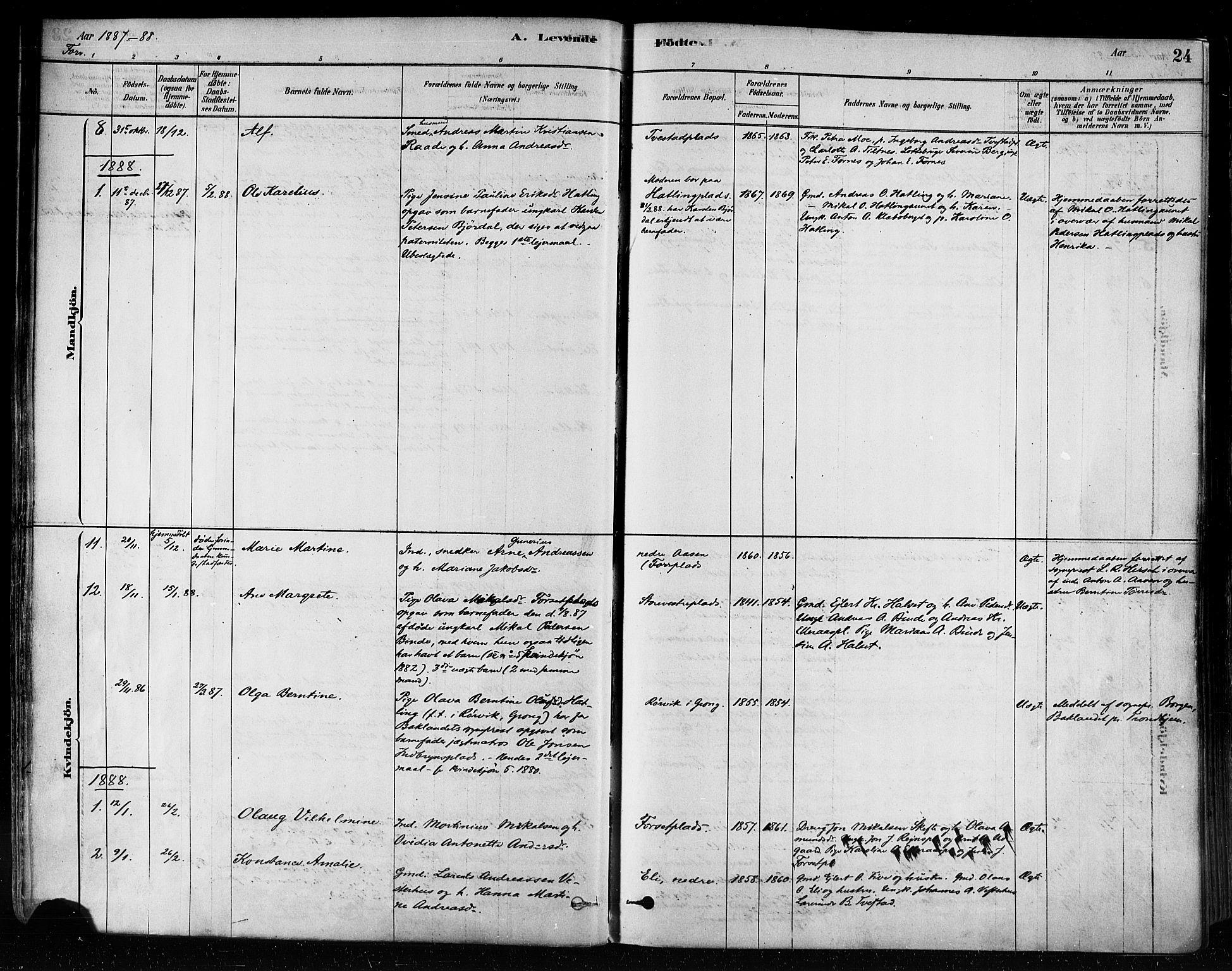 SAT, Ministerialprotokoller, klokkerbøker og fødselsregistre - Nord-Trøndelag, 746/L0448: Ministerialbok nr. 746A07 /1, 1878-1900, s. 24
