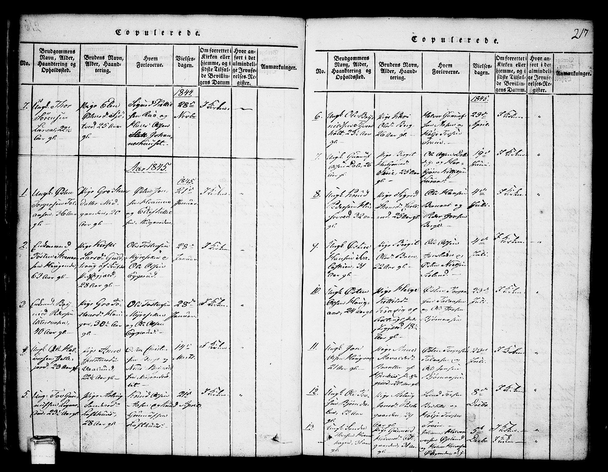 SAKO, Tinn kirkebøker, G/Ga/L0001: Klokkerbok nr. I 1, 1815-1850, s. 217
