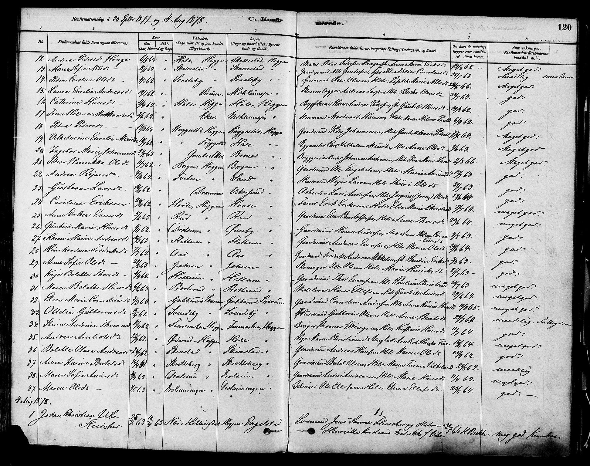 SAKO, Modum kirkebøker, F/Fa/L0011: Ministerialbok nr. 11, 1877-1889, s. 120