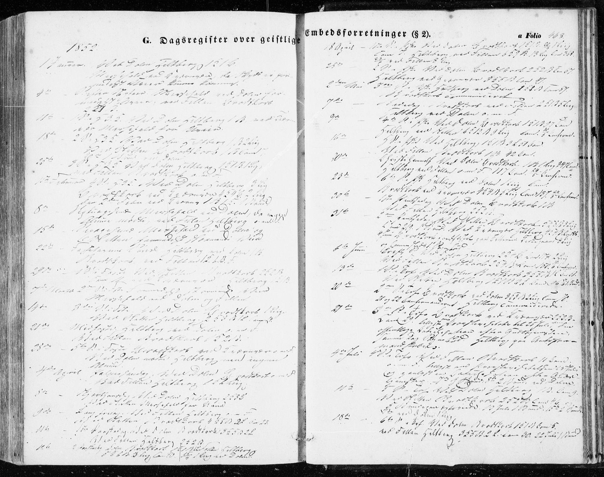 SAT, Ministerialprotokoller, klokkerbøker og fødselsregistre - Sør-Trøndelag, 634/L0530: Ministerialbok nr. 634A06, 1852-1860, s. 463