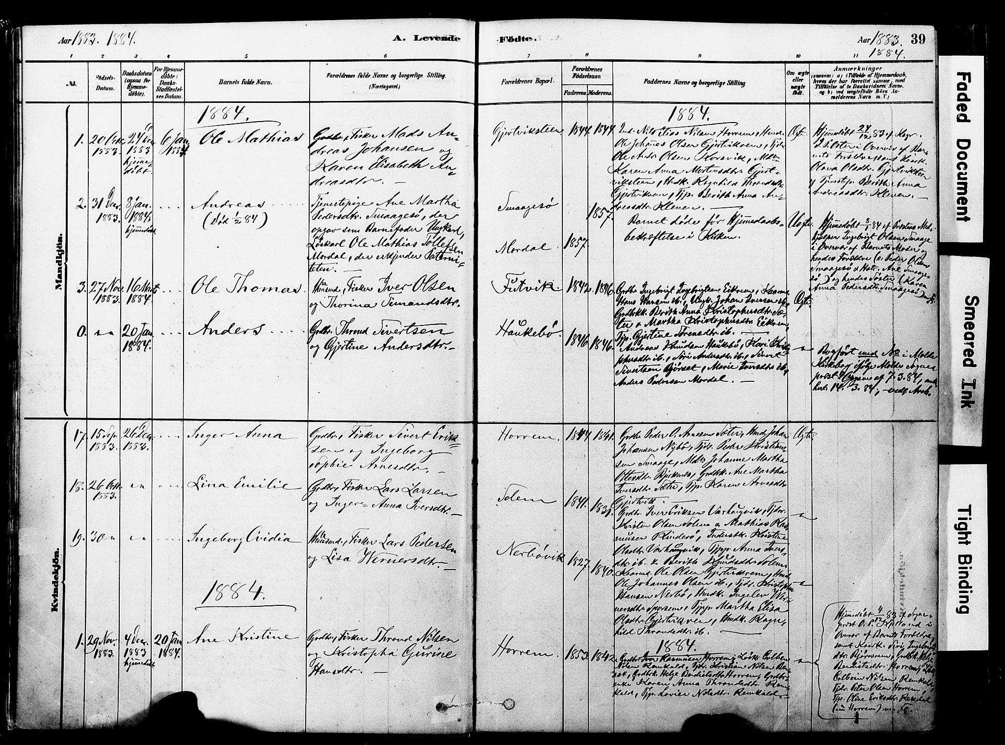 SAT, Ministerialprotokoller, klokkerbøker og fødselsregistre - Møre og Romsdal, 560/L0721: Ministerialbok nr. 560A05, 1878-1917, s. 39