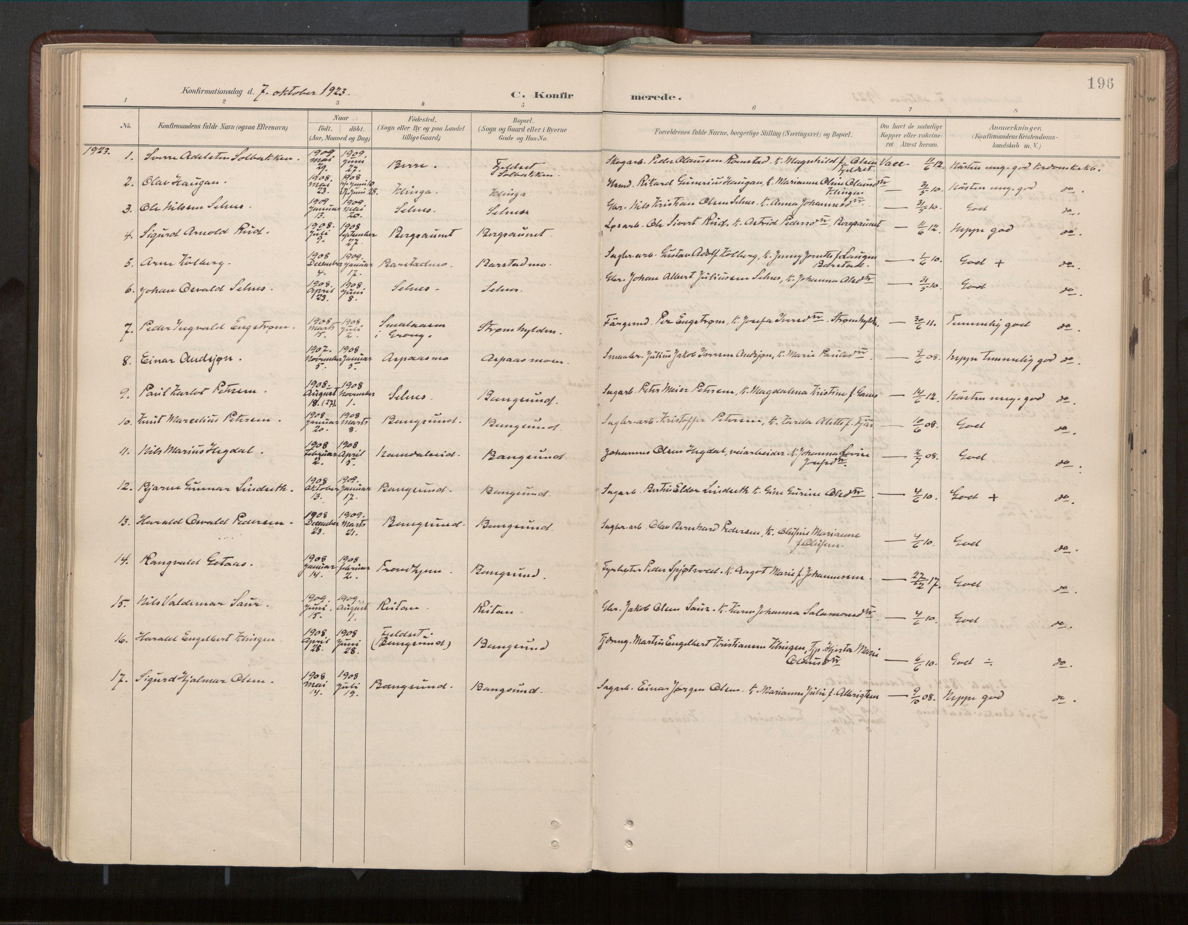 SAT, Ministerialprotokoller, klokkerbøker og fødselsregistre - Nord-Trøndelag, 770/L0589: Ministerialbok nr. 770A03, 1887-1929, s. 196