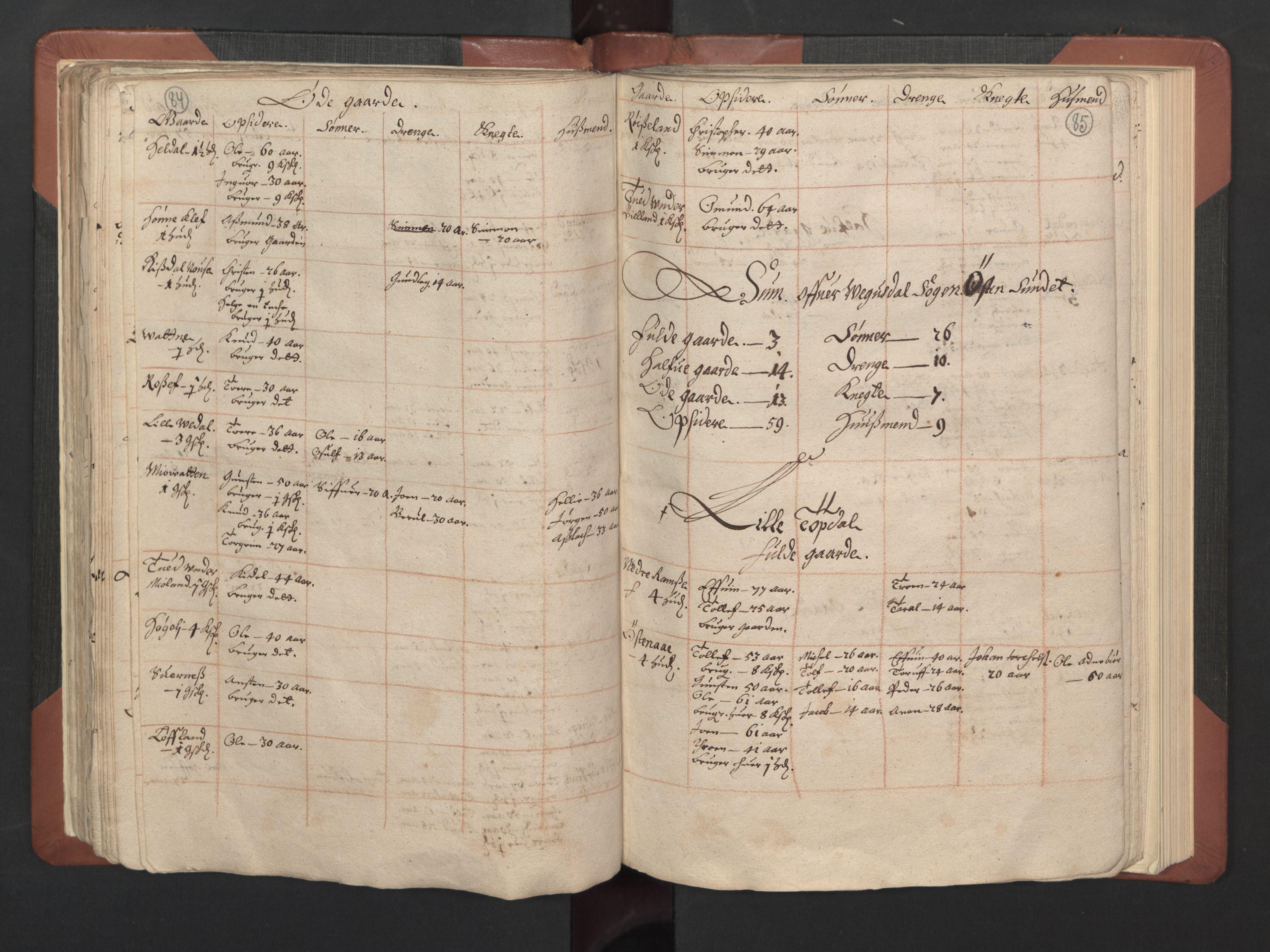 RA, Fogdenes og sorenskrivernes manntall 1664-1666, nr. 8: Råbyggelaget fogderi, 1664-1665, s. 84-85