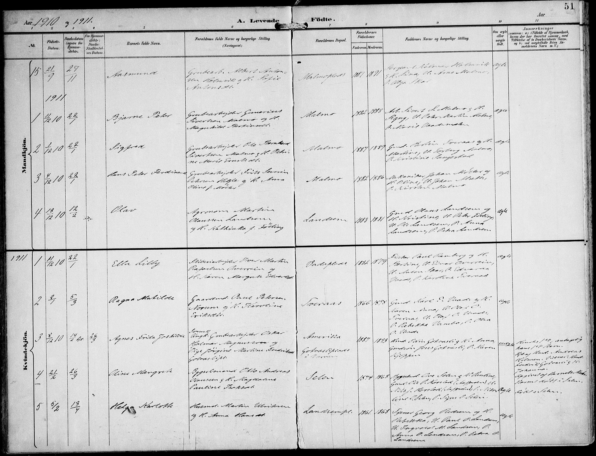 SAT, Ministerialprotokoller, klokkerbøker og fødselsregistre - Nord-Trøndelag, 745/L0430: Ministerialbok nr. 745A02, 1895-1913, s. 51