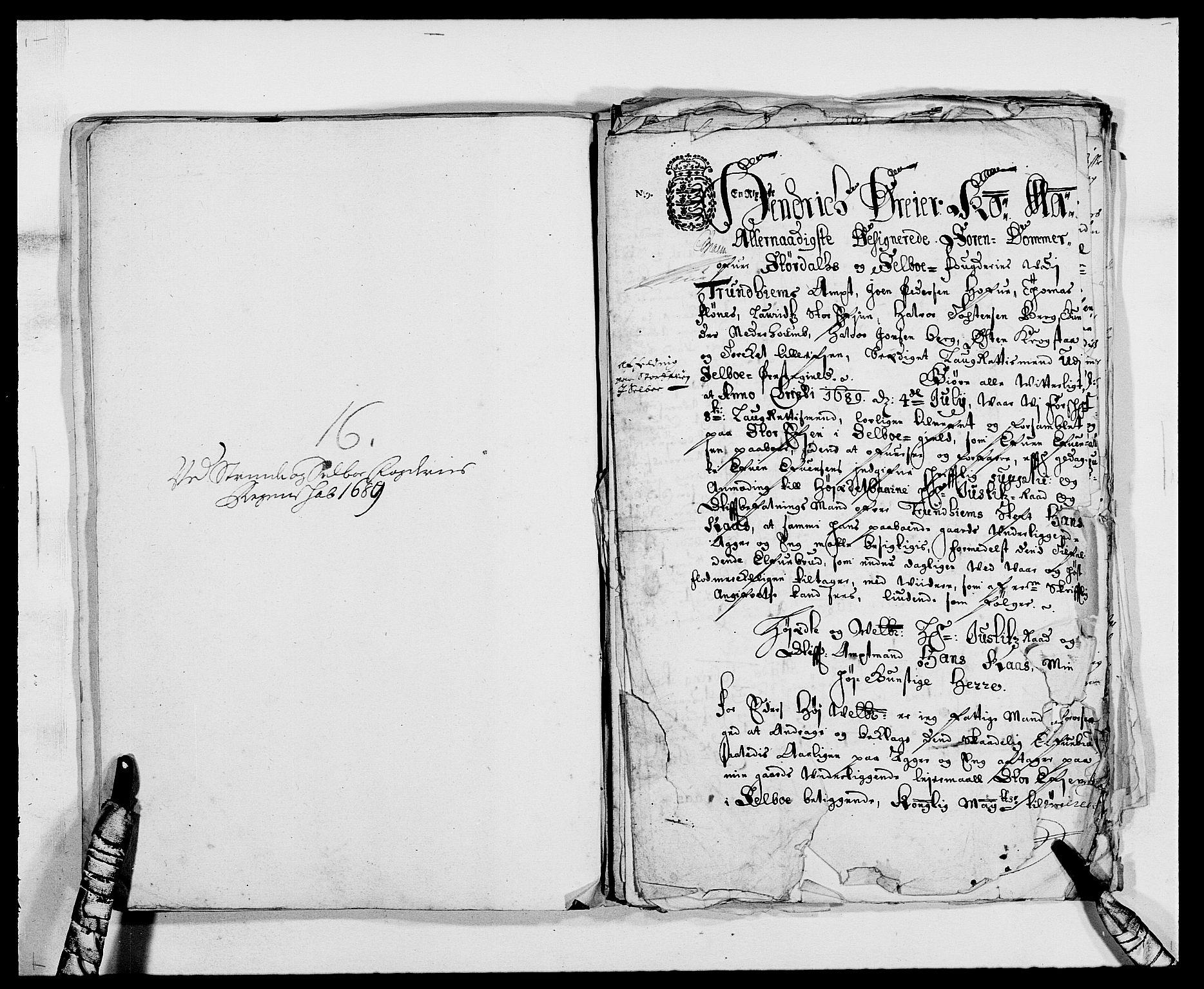 RA, Rentekammeret inntil 1814, Reviderte regnskaper, Fogderegnskap, R61/L4102: Fogderegnskap Strinda og Selbu, 1689-1690, s. 100