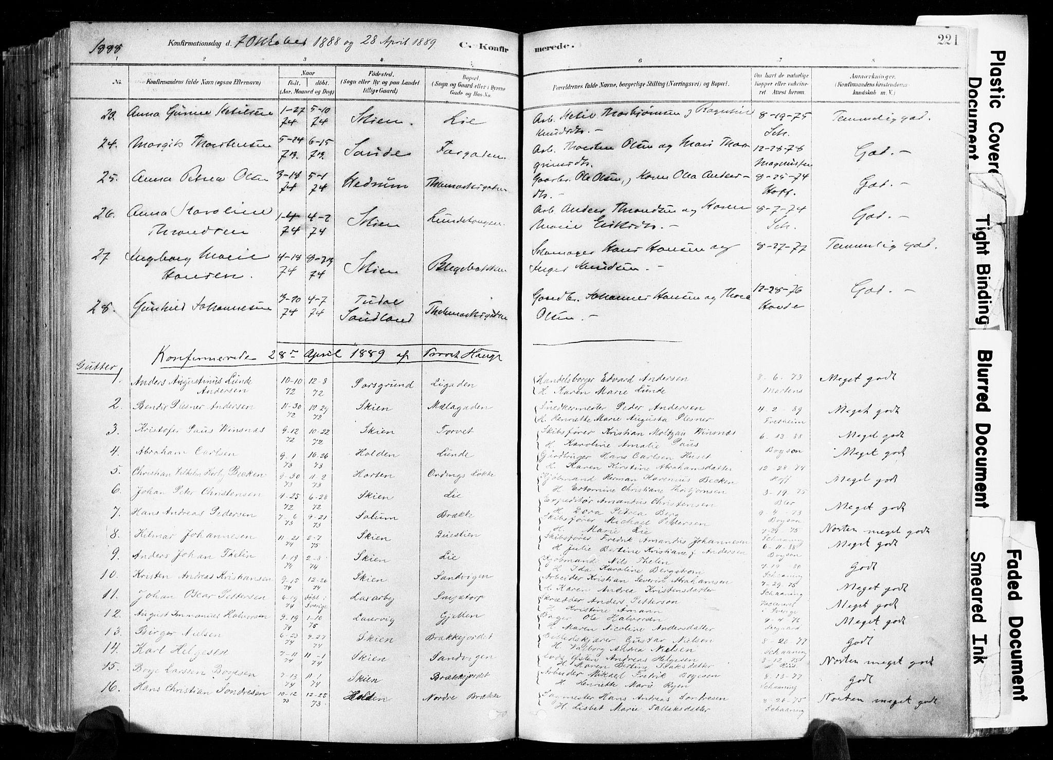SAKO, Skien kirkebøker, F/Fa/L0009: Ministerialbok nr. 9, 1878-1890, s. 221