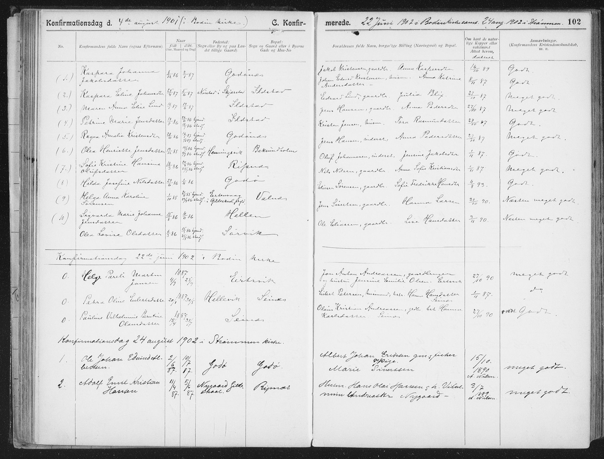 SAT, Ministerialprotokoller, klokkerbøker og fødselsregistre - Nordland, 804/L0081: Ministerialbok nr. 804A02, 1901-1915, s. 102