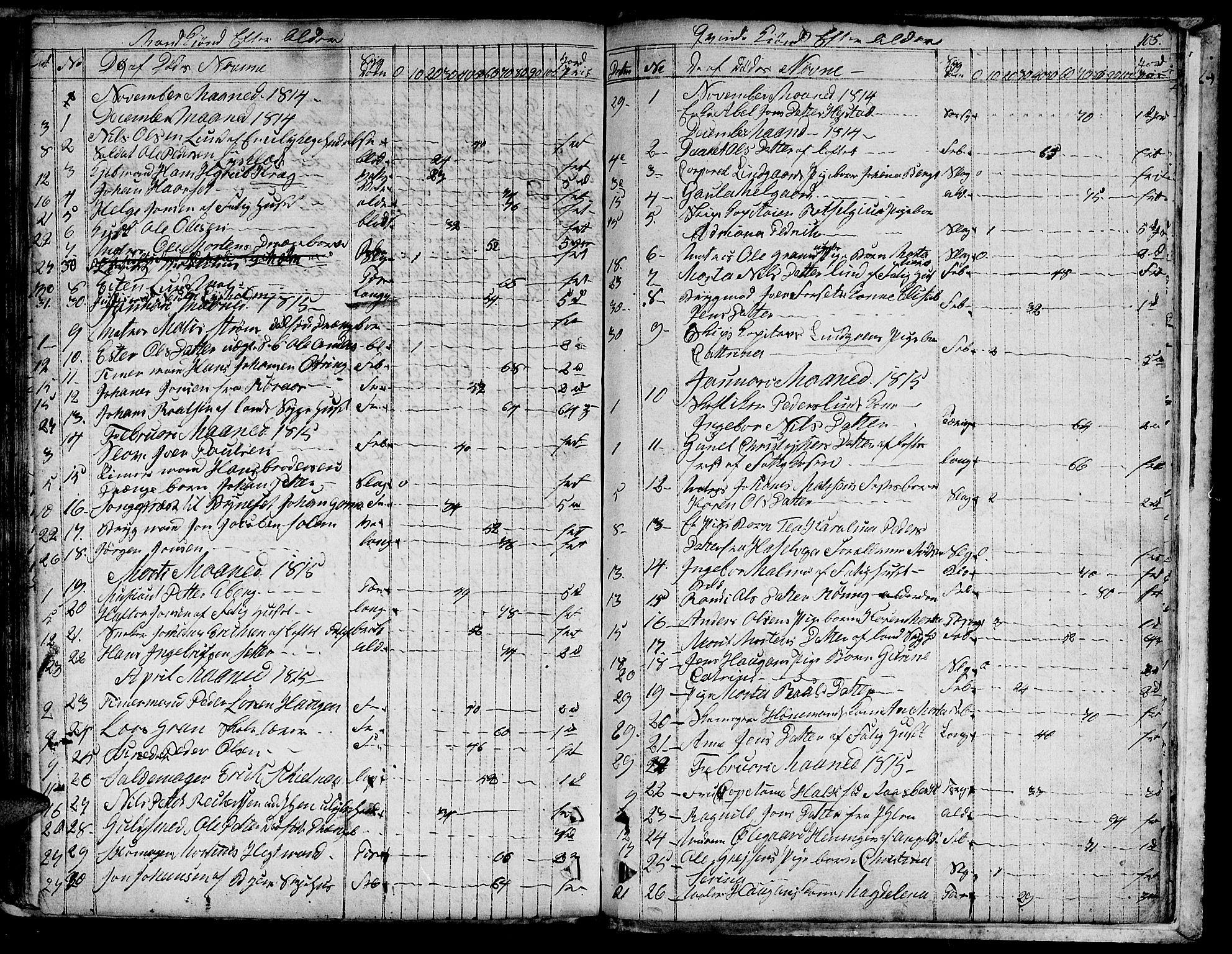 SAT, Ministerialprotokoller, klokkerbøker og fødselsregistre - Sør-Trøndelag, 601/L0040: Ministerialbok nr. 601A08, 1783-1818, s. 105