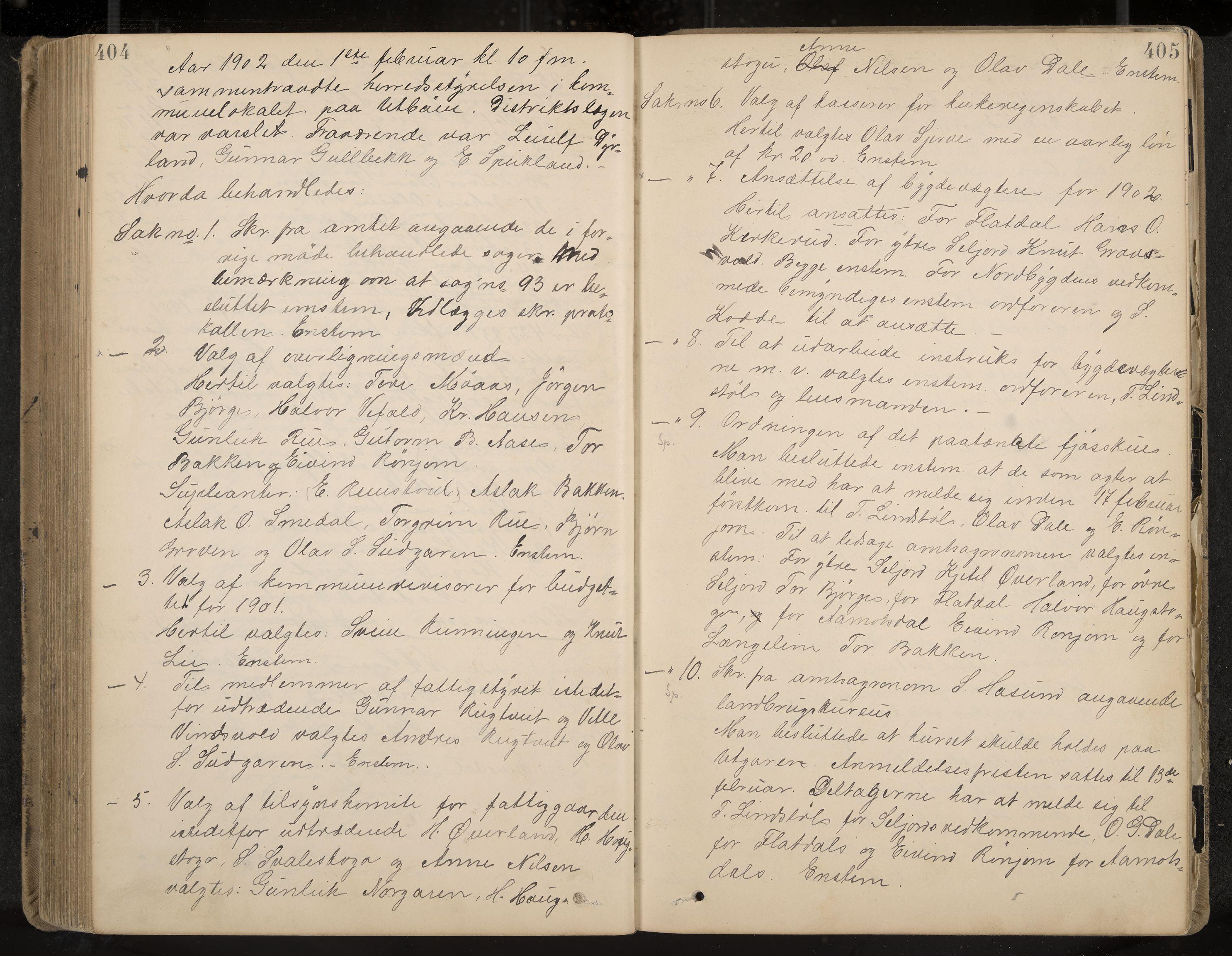 IKAK, Seljord formannskap og sentraladministrasjon, A/Aa/L0003: Møtebok med register, 1891-1905, s. 404-405