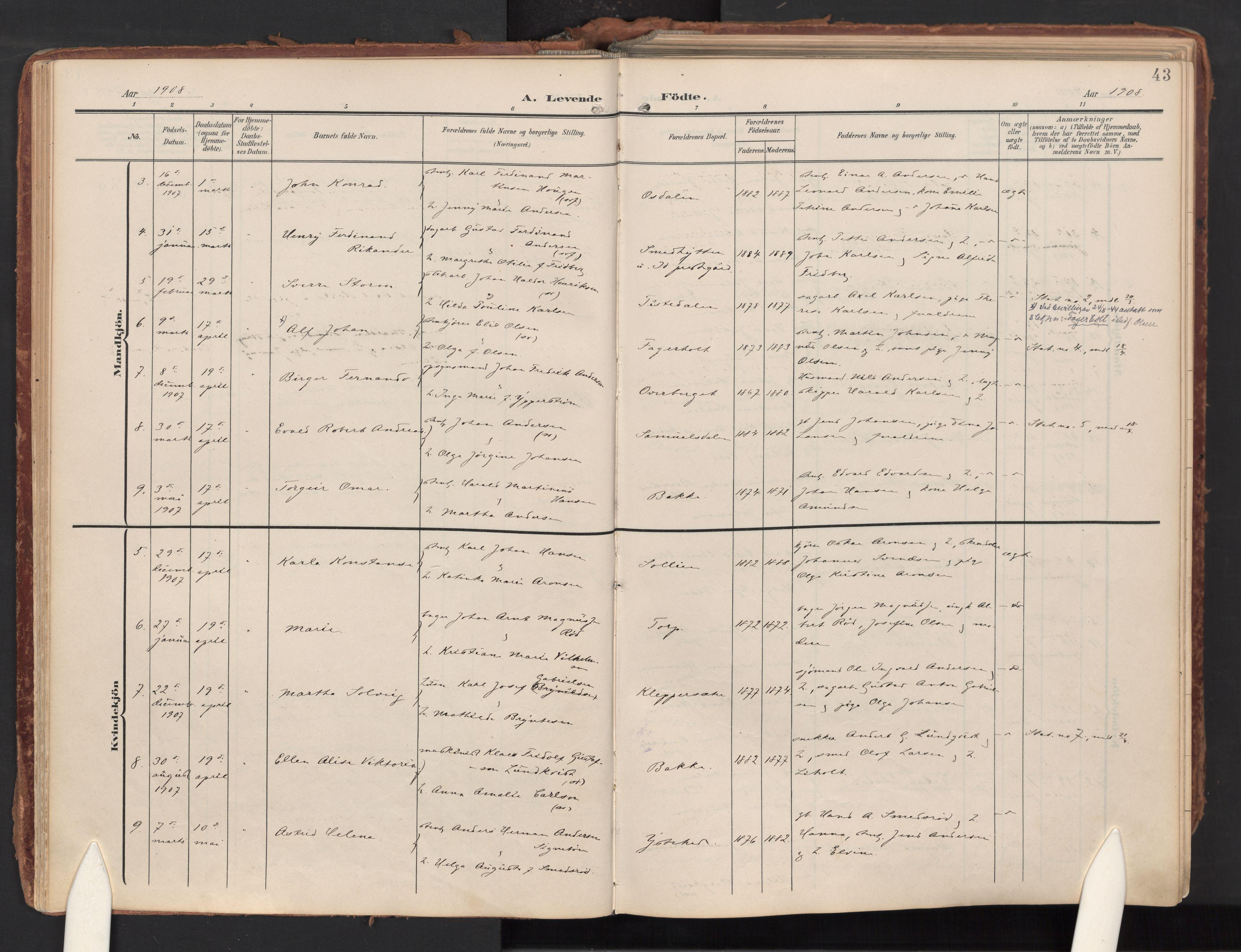 SAO, Idd prestekontor Kirkebøker, F/Fc/L0007: Ministerialbok nr. III 7, 1904-1925, s. 43