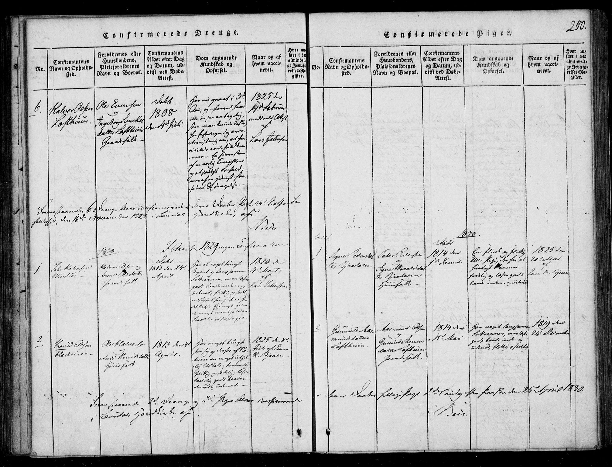 SAKO, Lårdal kirkebøker, F/Fb/L0001: Ministerialbok nr. II 1, 1815-1860, s. 250