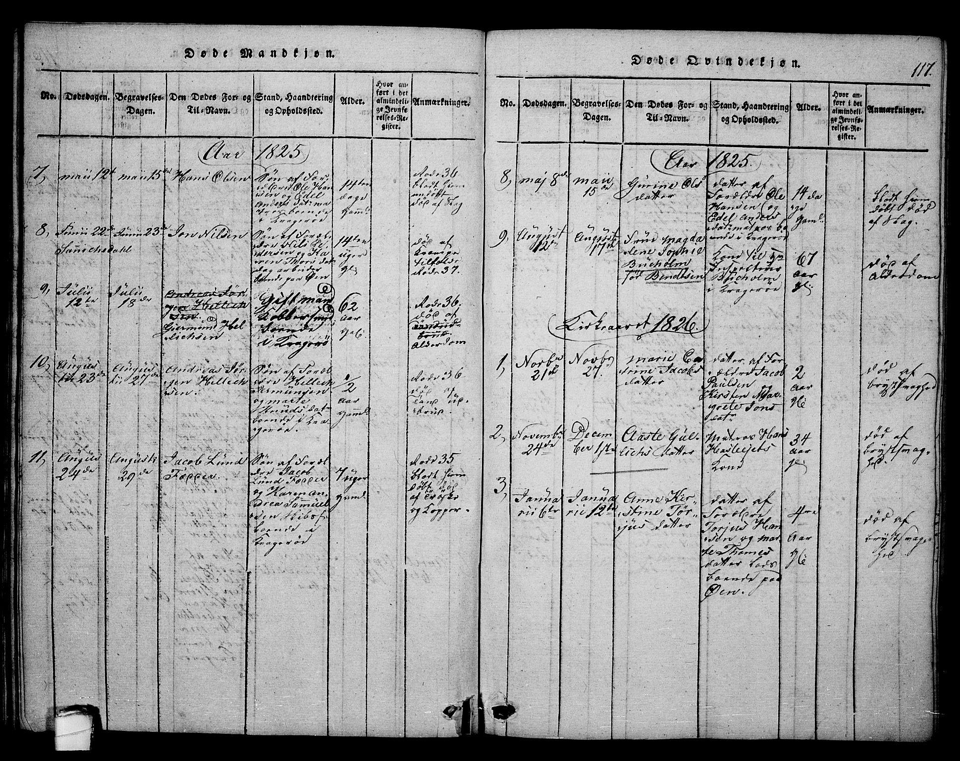 SAKO, Kragerø kirkebøker, F/Fa/L0004: Ministerialbok nr. 4, 1814-1831, s. 117