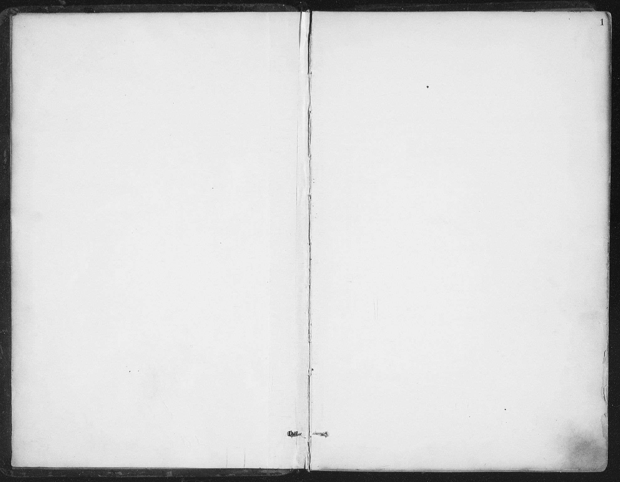 SAT, Ministerialprotokoller, klokkerbøker og fødselsregistre - Nord-Trøndelag, 786/L0687: Ministerialbok nr. 786A03, 1888-1898, s. 1