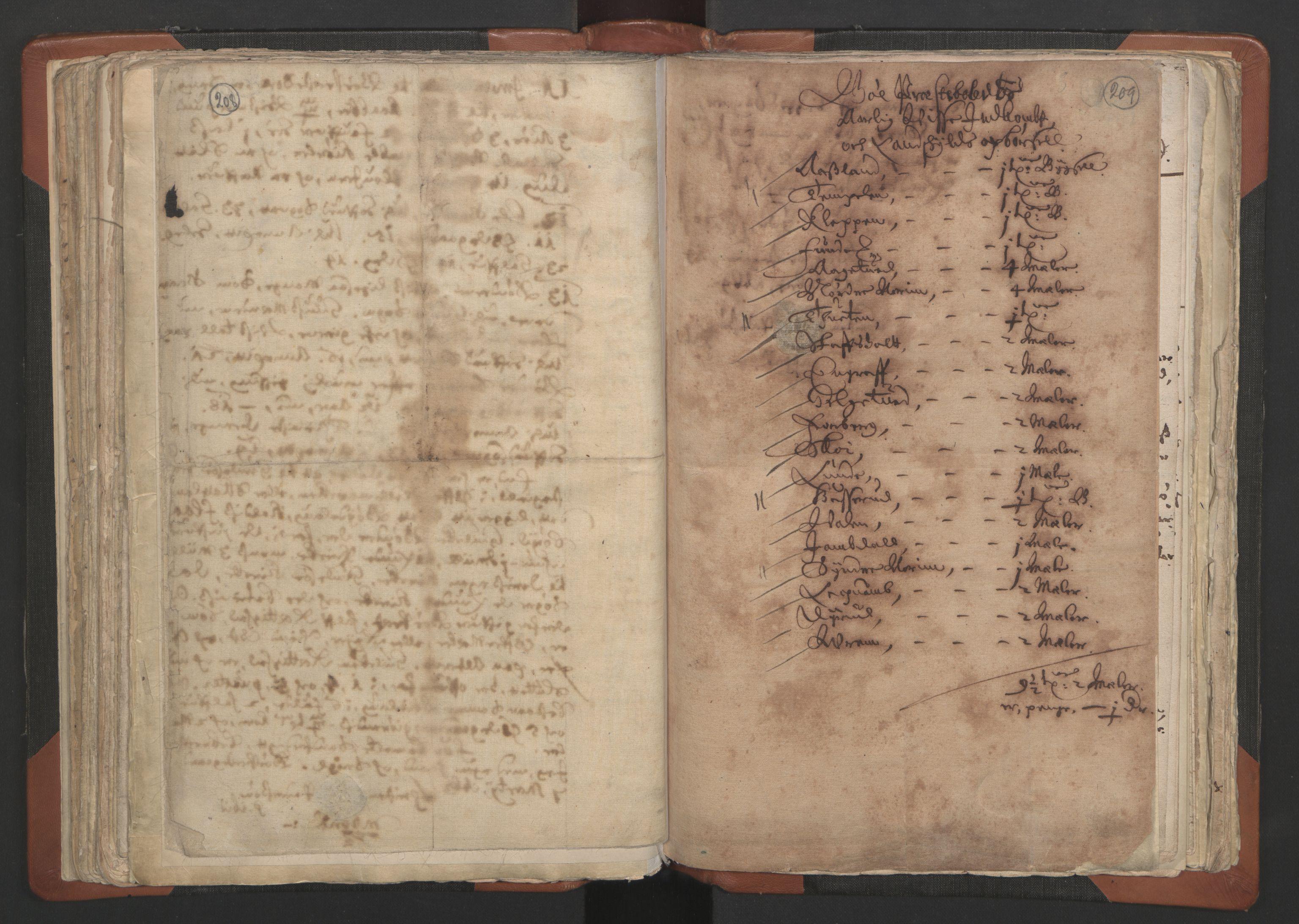 RA, Sogneprestenes manntall 1664-1666, nr. 12: Øvre Telemark prosti, Nedre Telemark prosti og Bamble prosti, 1664-1666, s. 208-209