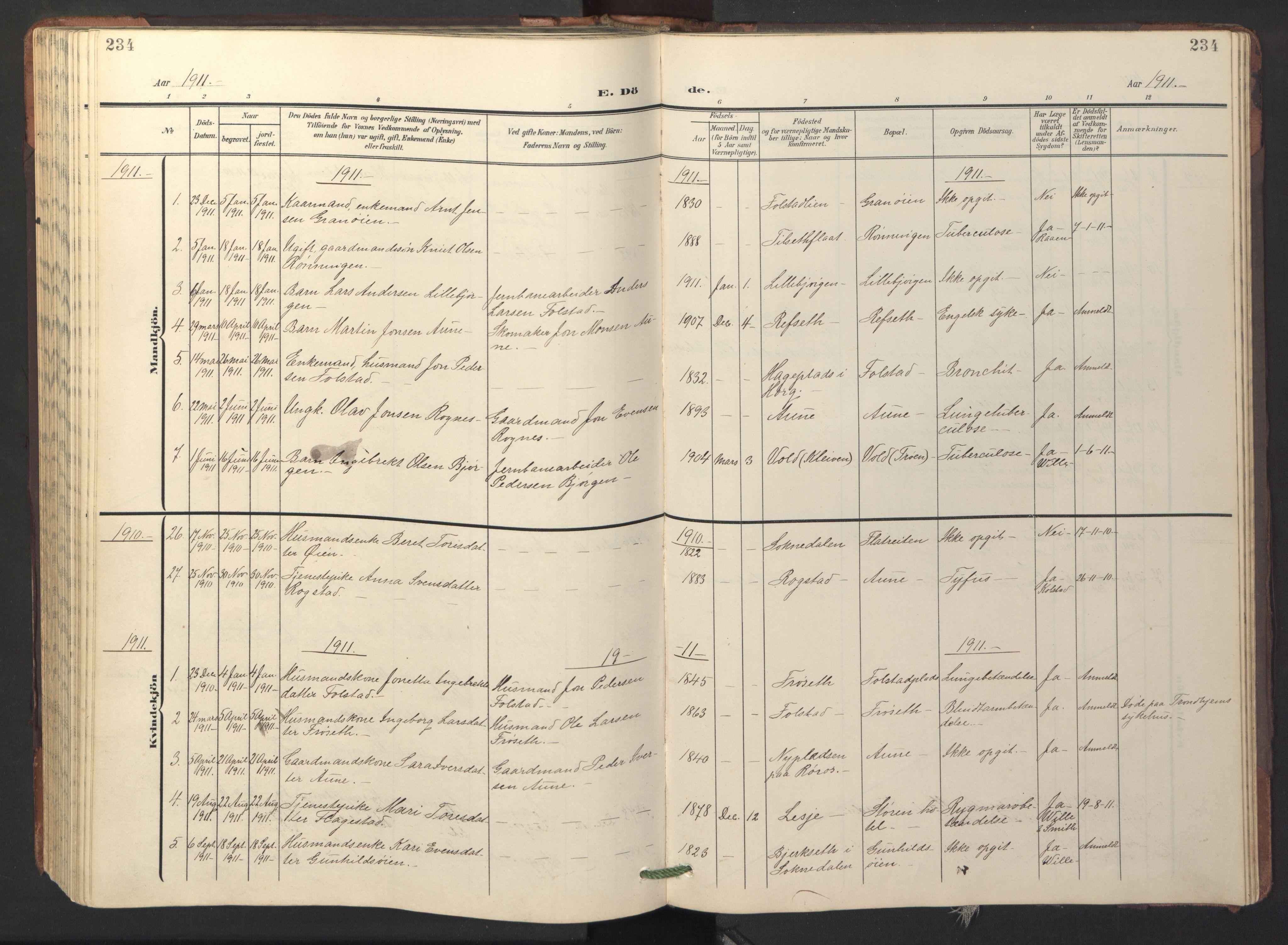 SAT, Ministerialprotokoller, klokkerbøker og fødselsregistre - Sør-Trøndelag, 687/L1019: Klokkerbok nr. 687C03, 1904-1931, s. 234
