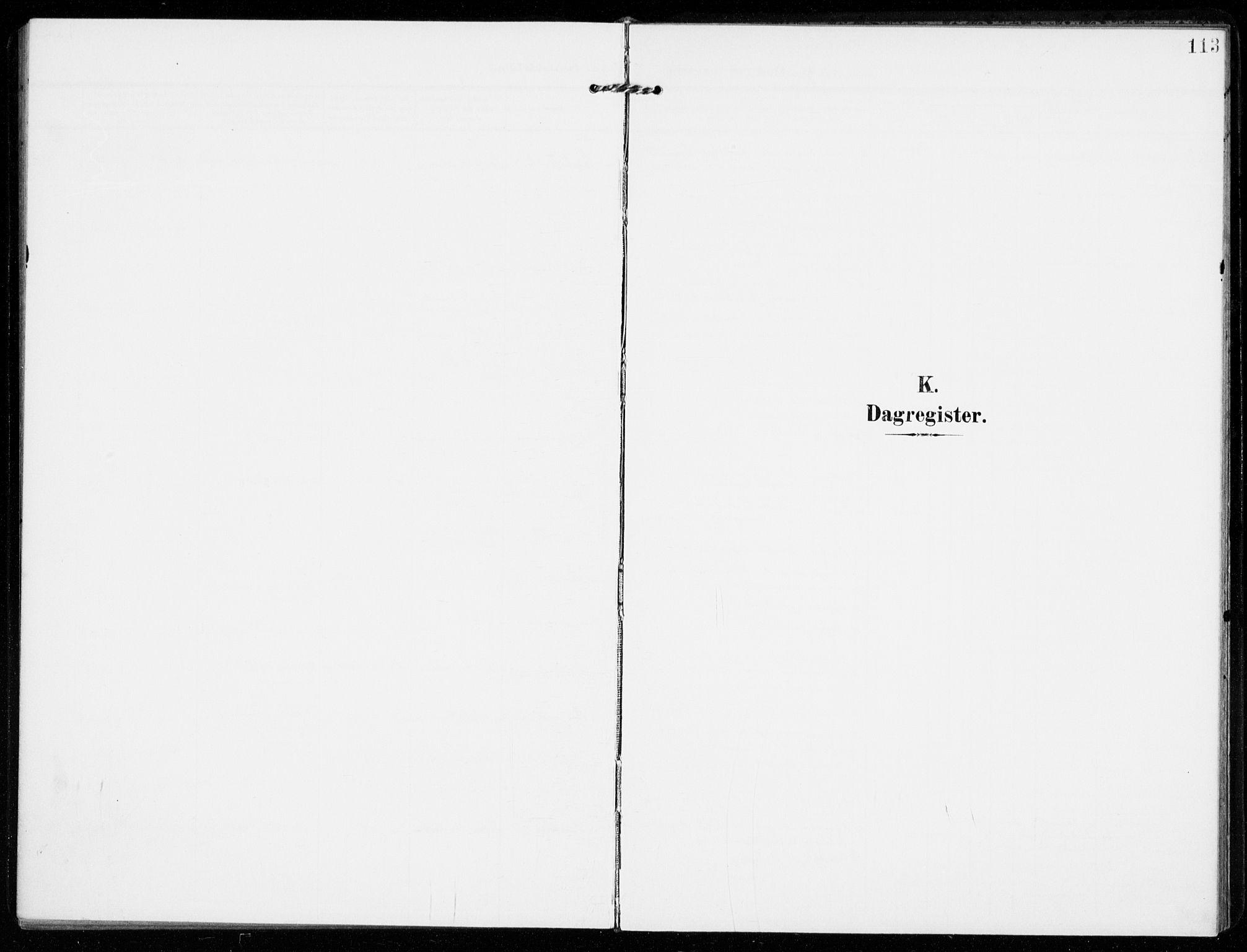 SAKO, Sandar kirkebøker, F/Fa/L0019: Ministerialbok nr. 19, 1908-1914, s. 113