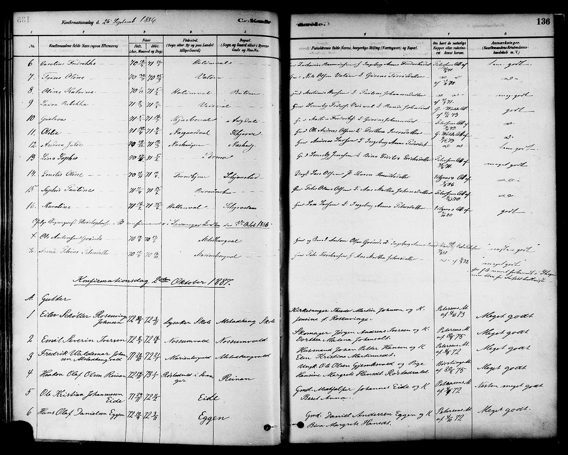 SAT, Ministerialprotokoller, klokkerbøker og fødselsregistre - Nord-Trøndelag, 717/L0159: Ministerialbok nr. 717A09, 1878-1898, s. 136
