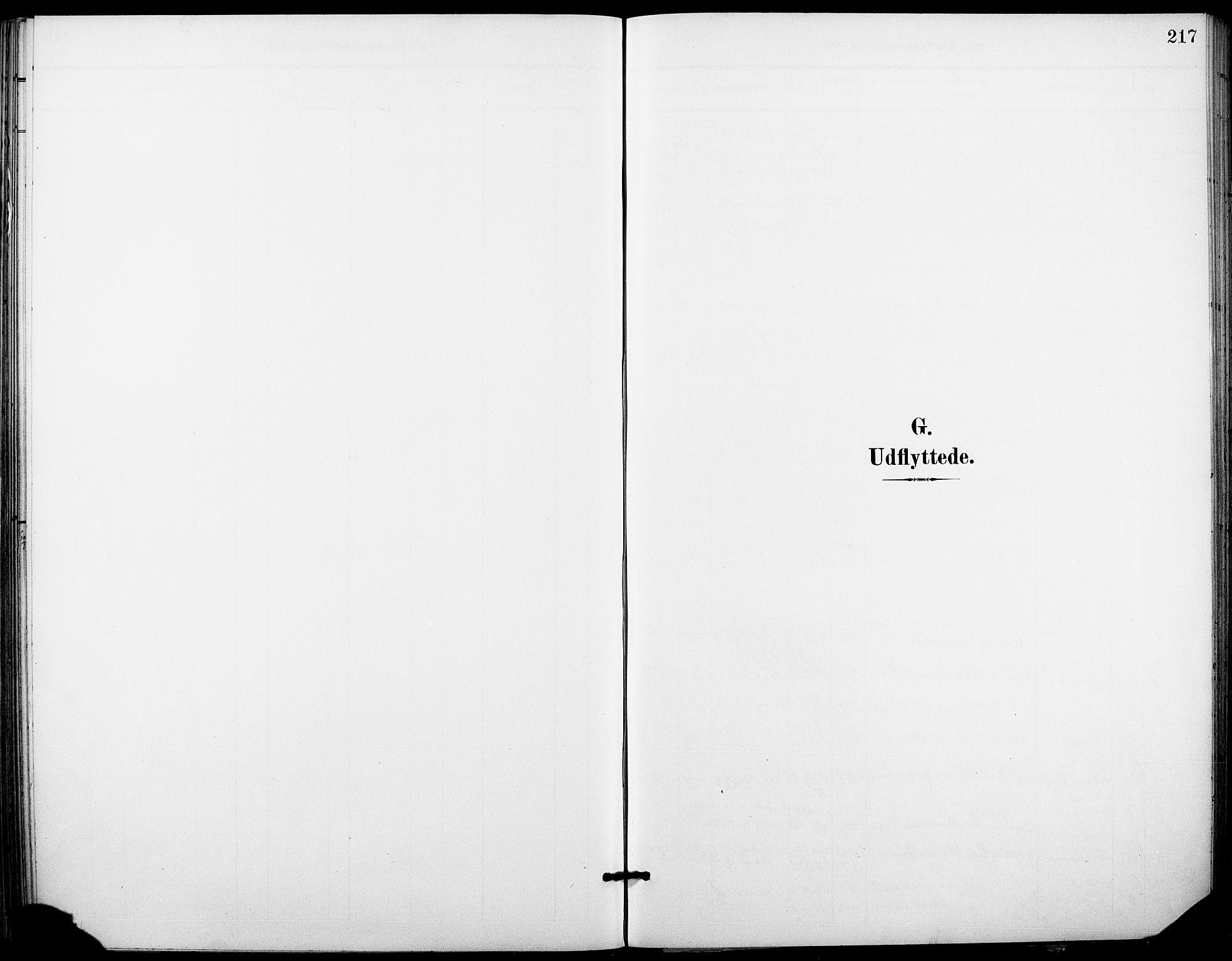 SAKO, Holla kirkebøker, F/Fa/L0010: Ministerialbok nr. 10, 1897-1907, s. 217
