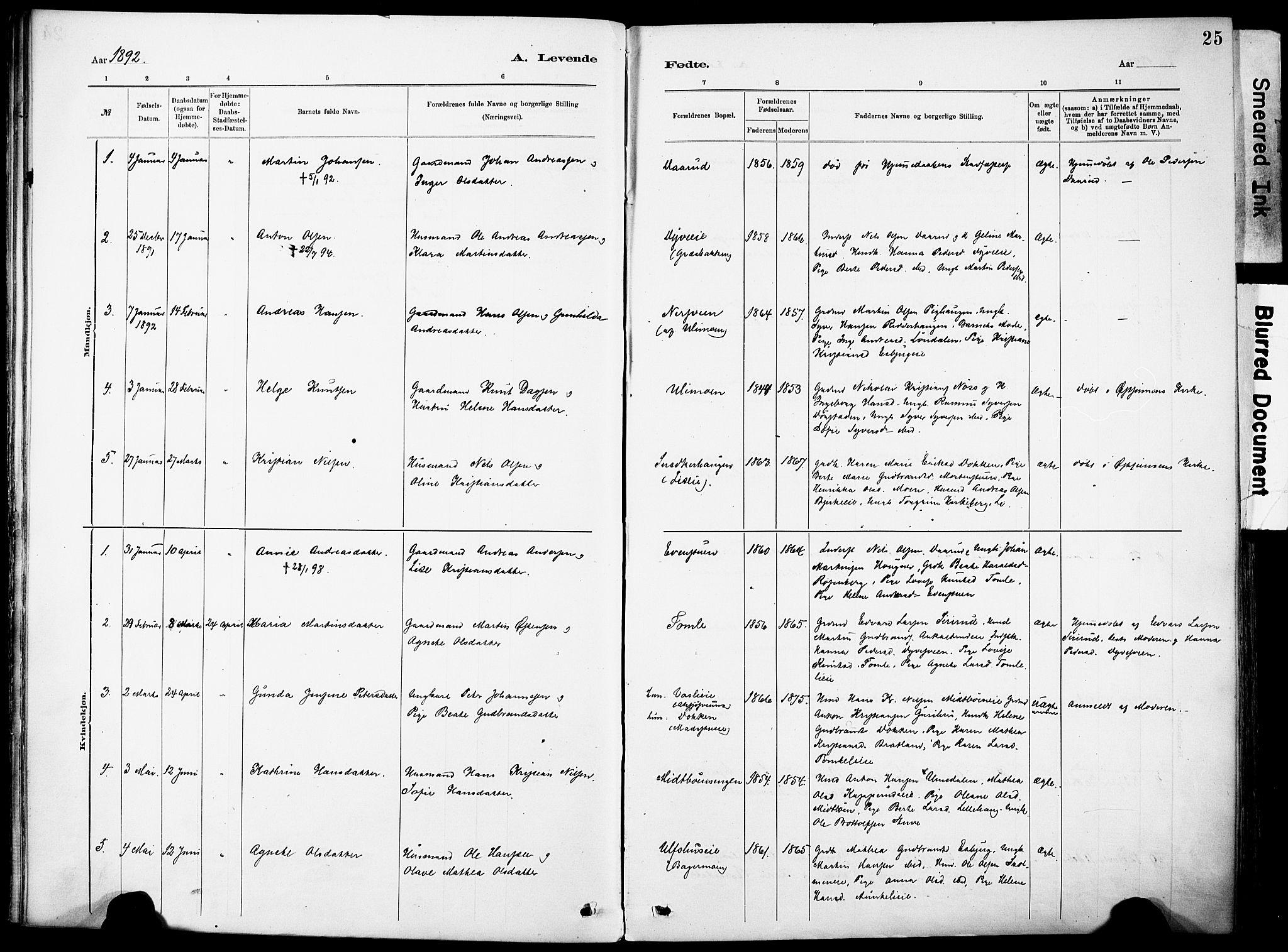 SAH, Nordre Land prestekontor, Ministerialbok nr. 5, 1882-1903, s. 25