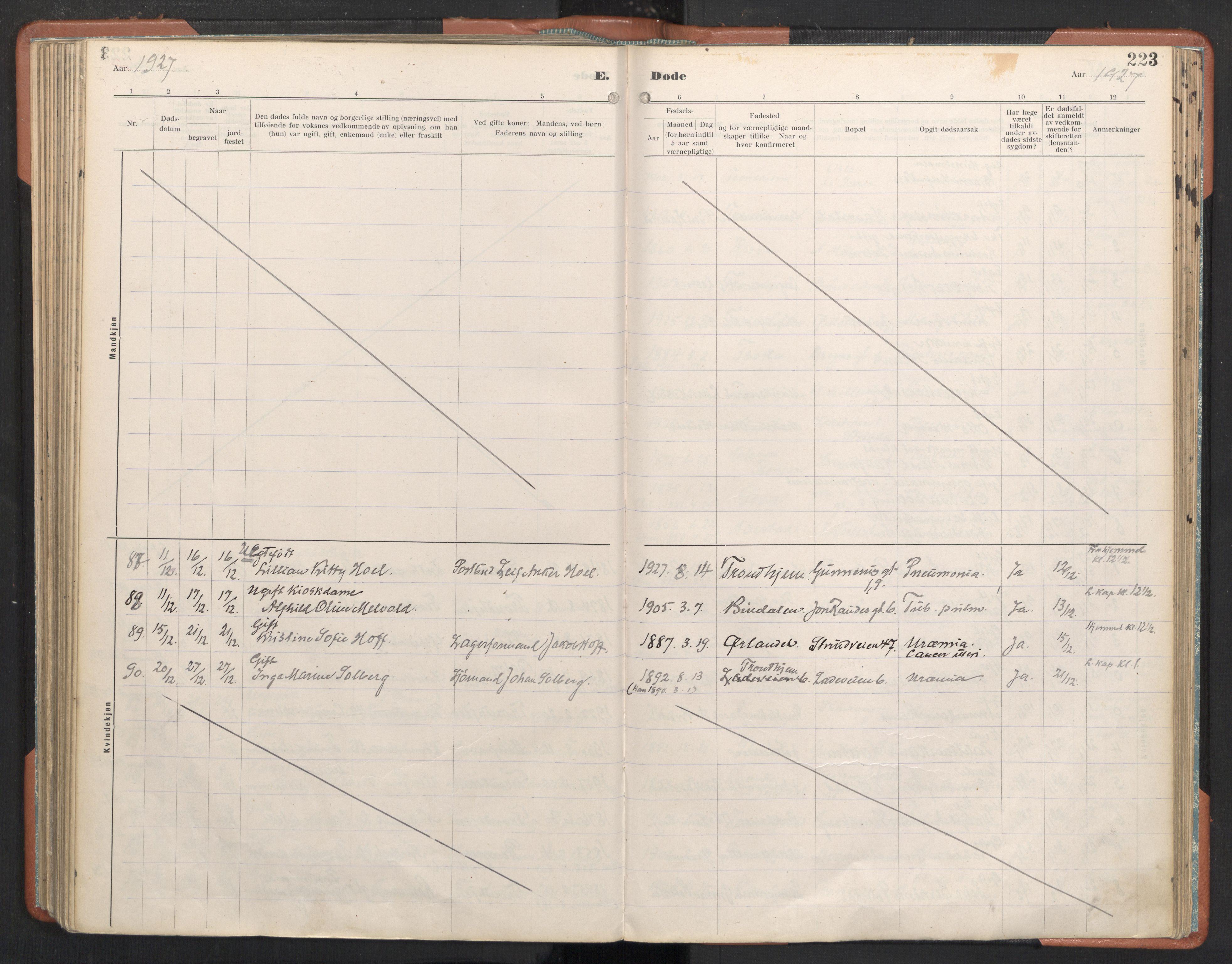 SAT, Ministerialprotokoller, klokkerbøker og fødselsregistre - Sør-Trøndelag, 605/L0245: Ministerialbok nr. 605A07, 1916-1938, s. 223