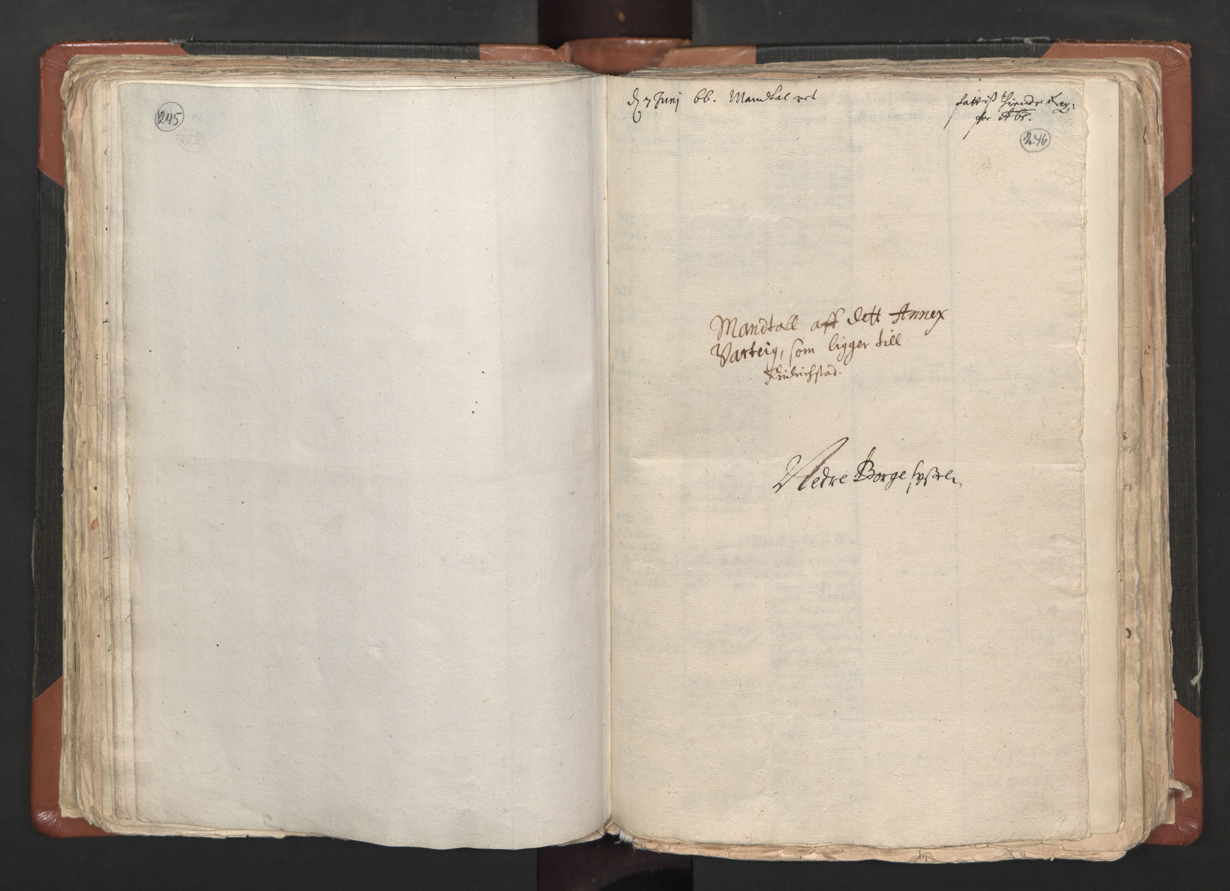 RA, Sogneprestenes manntall 1664-1666, nr. 1: Nedre Borgesyssel prosti, 1664-1666, s. 245-246