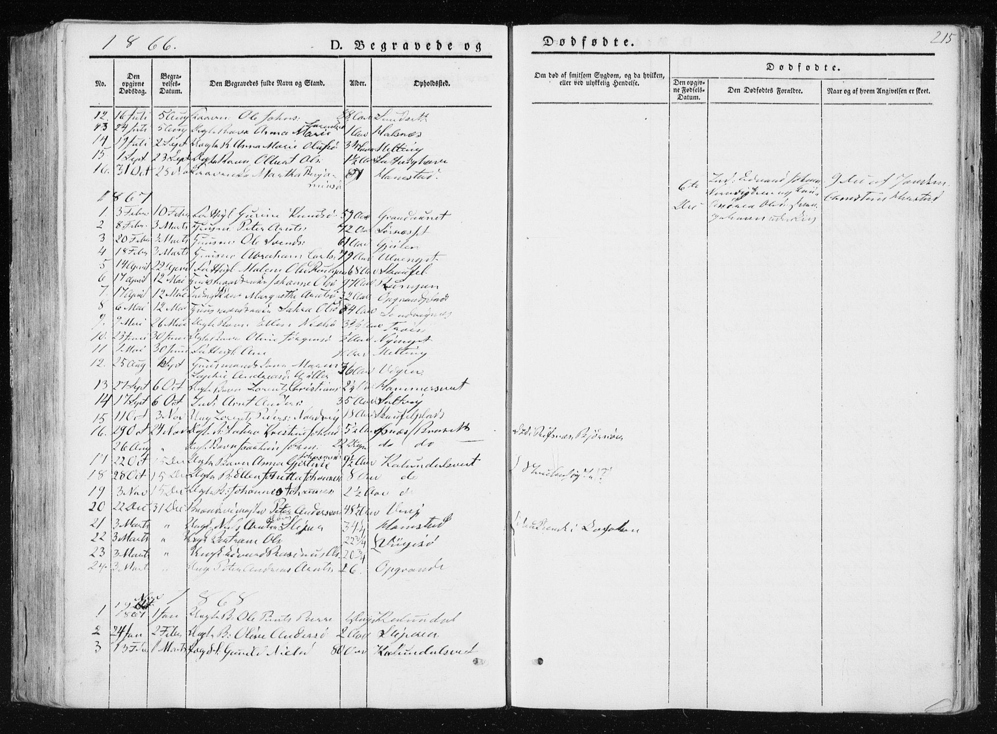 SAT, Ministerialprotokoller, klokkerbøker og fødselsregistre - Nord-Trøndelag, 733/L0323: Ministerialbok nr. 733A02, 1843-1870, s. 215