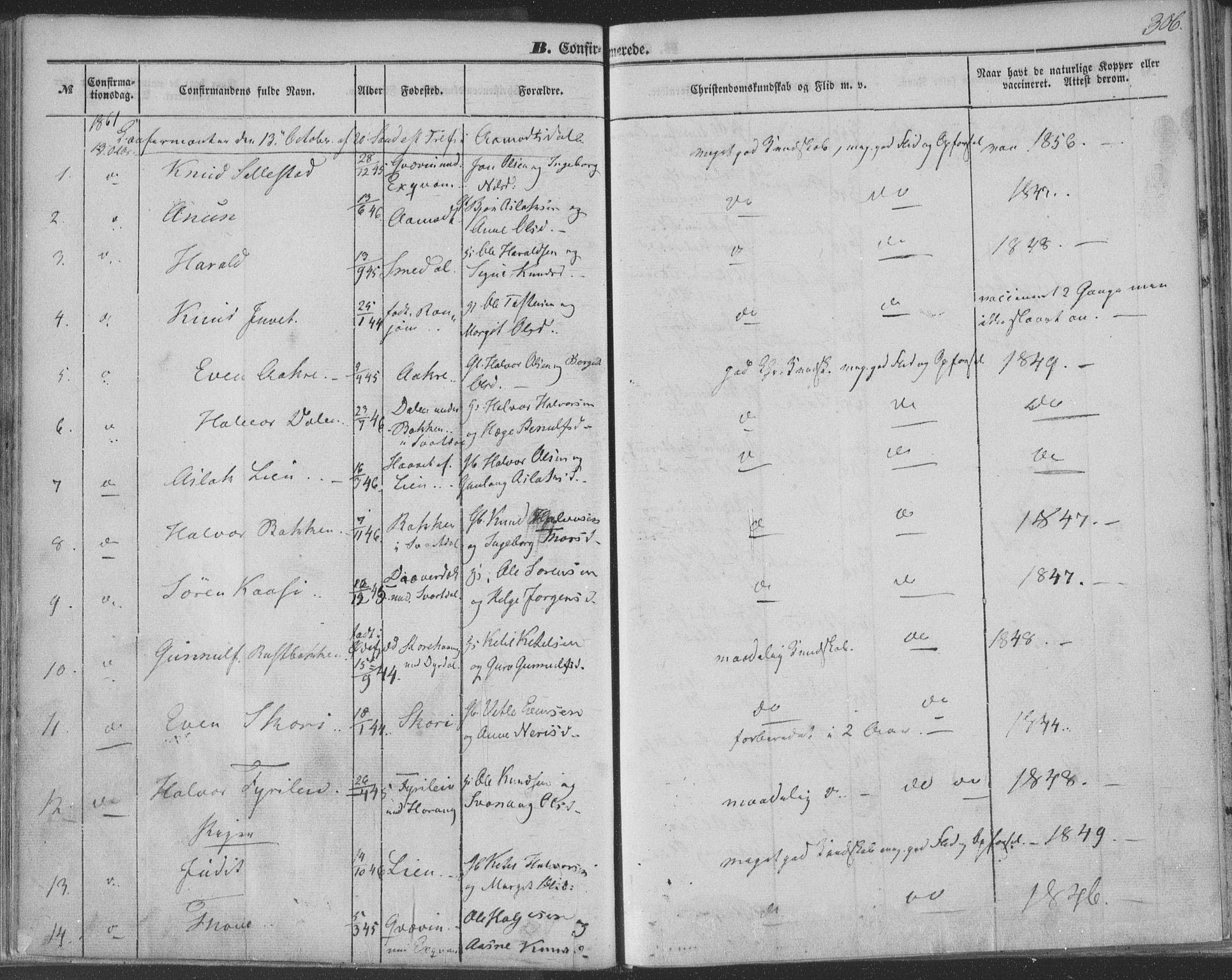 SAKO, Seljord kirkebøker, F/Fa/L012b: Ministerialbok nr. I 12B, 1850-1865, s. 306
