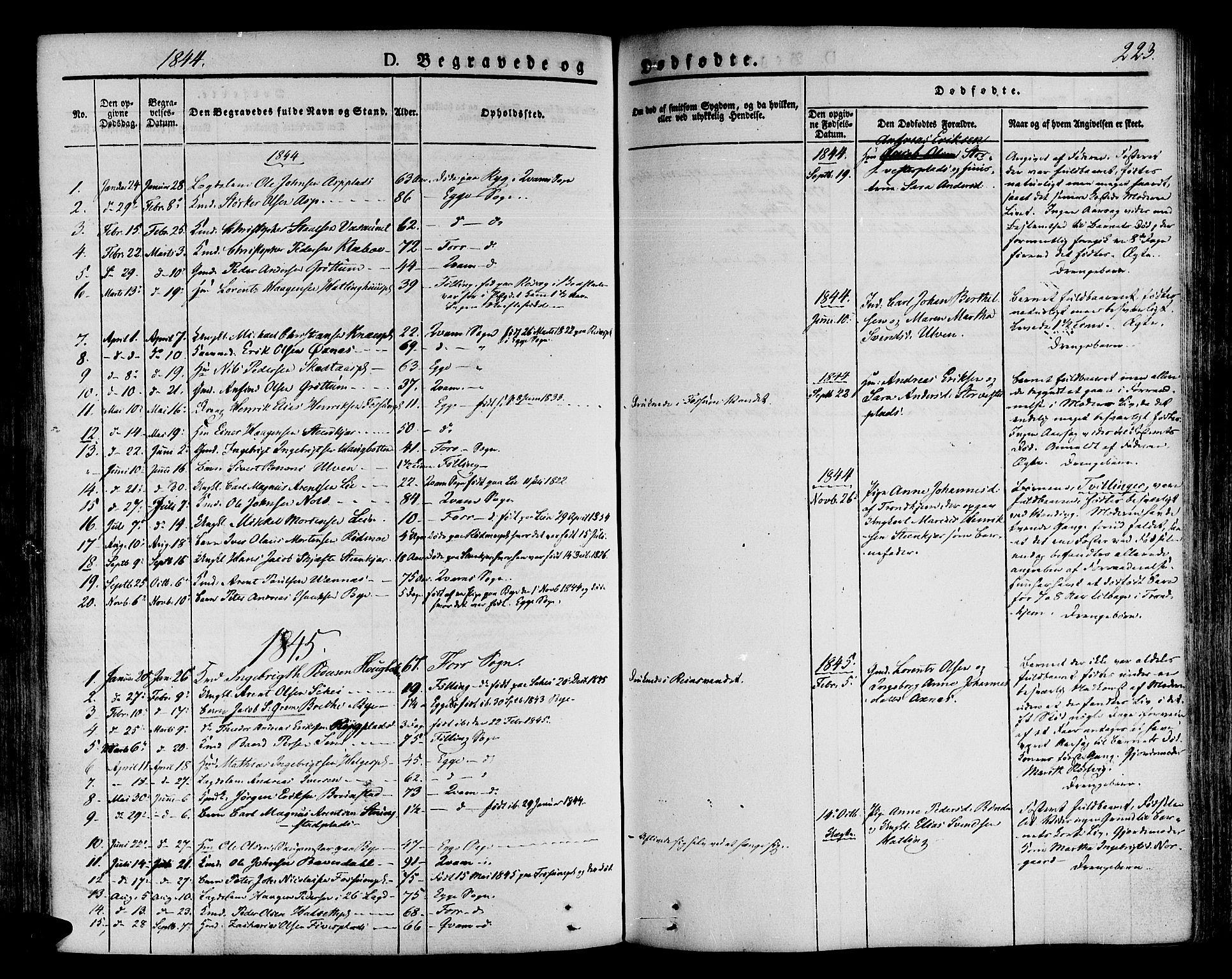 SAT, Ministerialprotokoller, klokkerbøker og fødselsregistre - Nord-Trøndelag, 746/L0445: Ministerialbok nr. 746A04, 1826-1846, s. 223