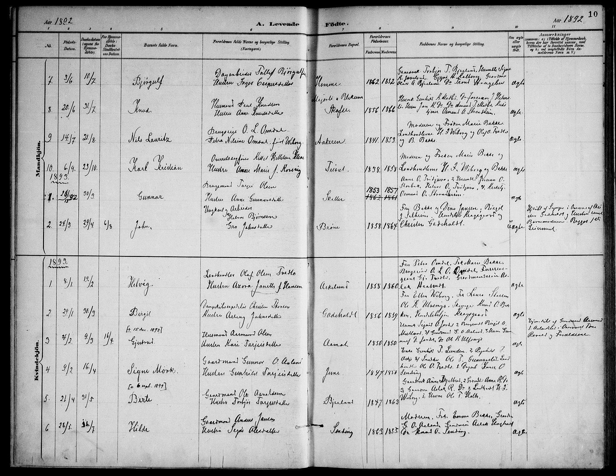 SAKO, Lårdal kirkebøker, F/Fa/L0007: Ministerialbok nr. I 7, 1887-1906, s. 10